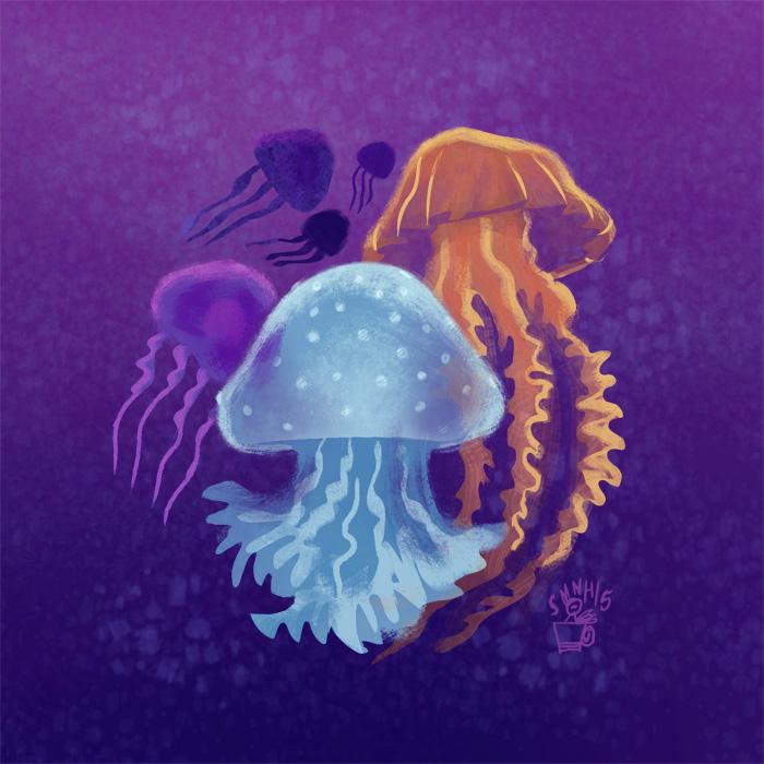 pin_jellyfishillo.jpg