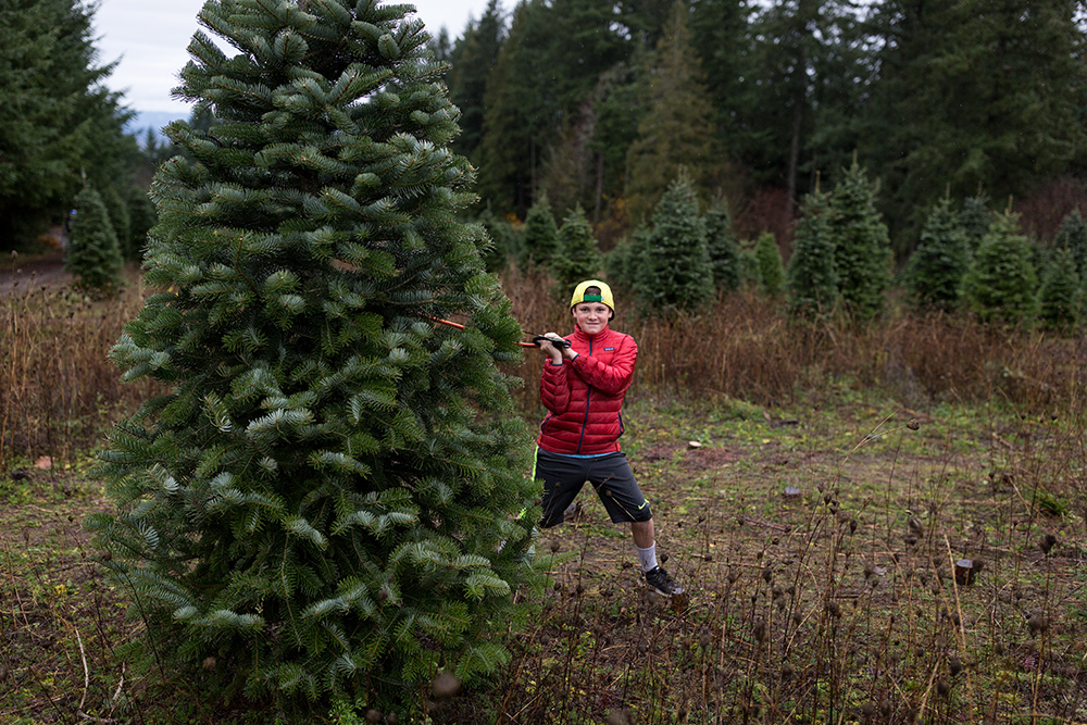 boy with saw and funny face by christmas tree