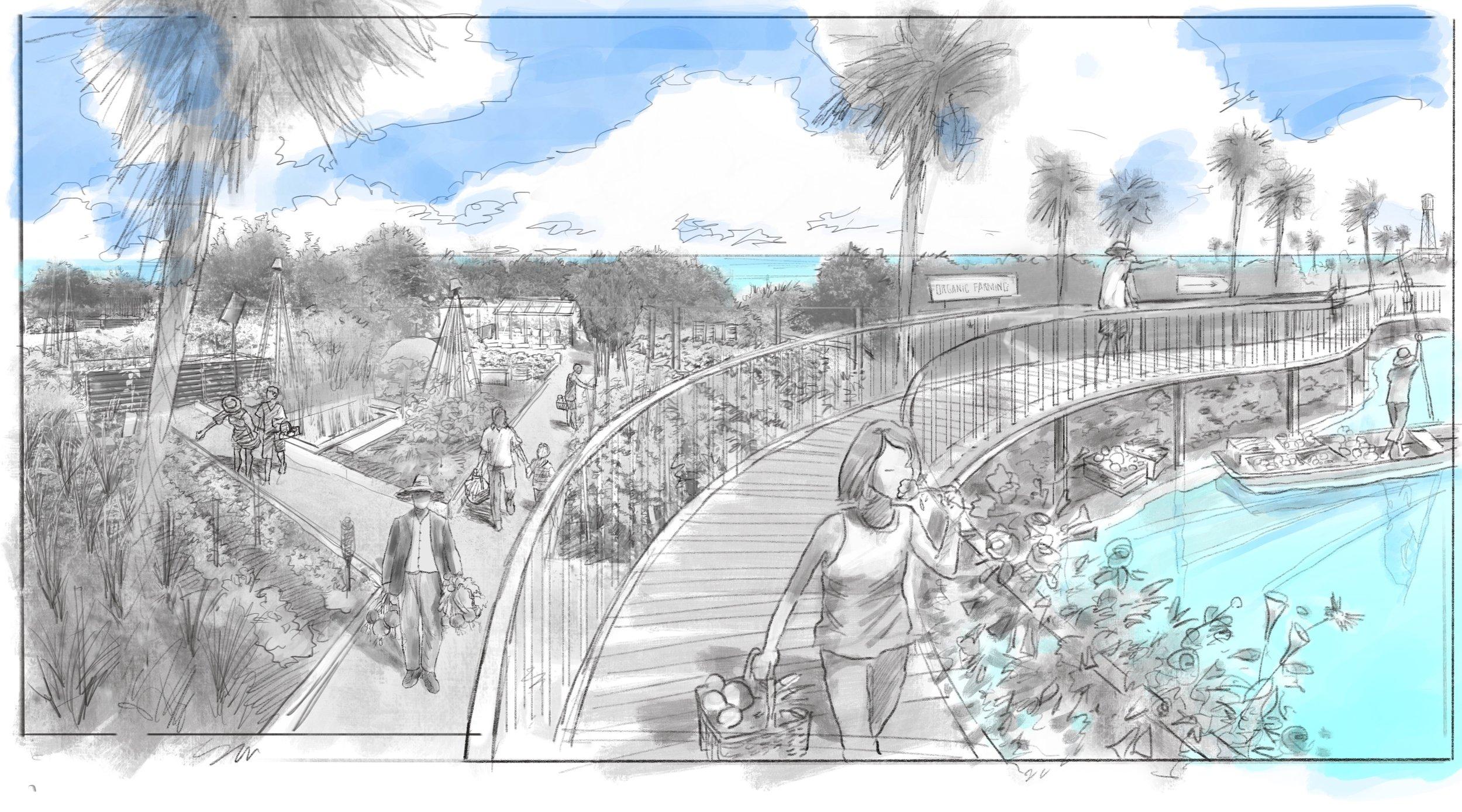 Farm_Boardwalk 2.jpg