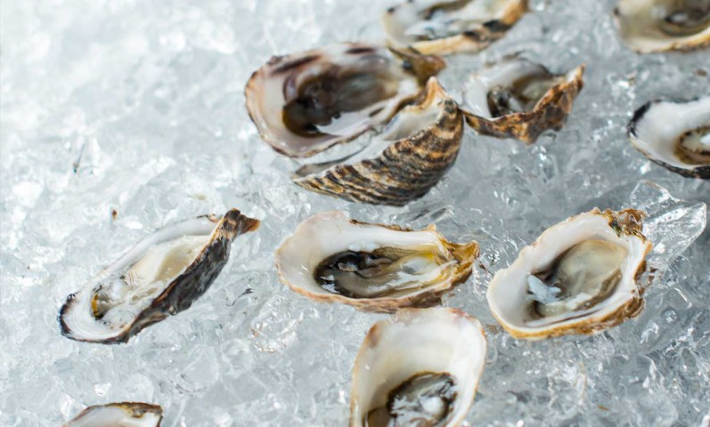 Where to get Oysters in San Francisco, Tomales Bay, Hog Island, Marshall Store, Chateau Sonoma, The History of Oysters