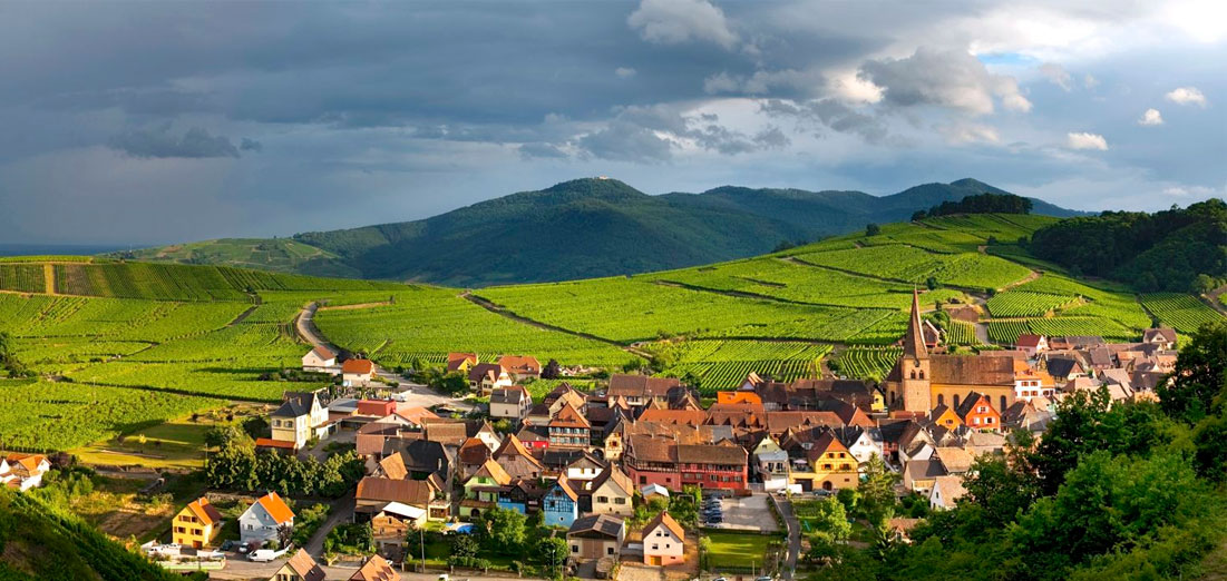 Alsace France, Wines of France, Bastille Day, Wine and Food, French Antiques, Flea Market Finds, Sonoma Events, Food and Wine