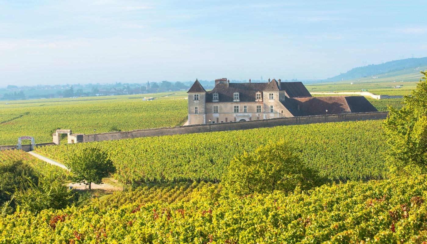 BurgundyWInery.jpg