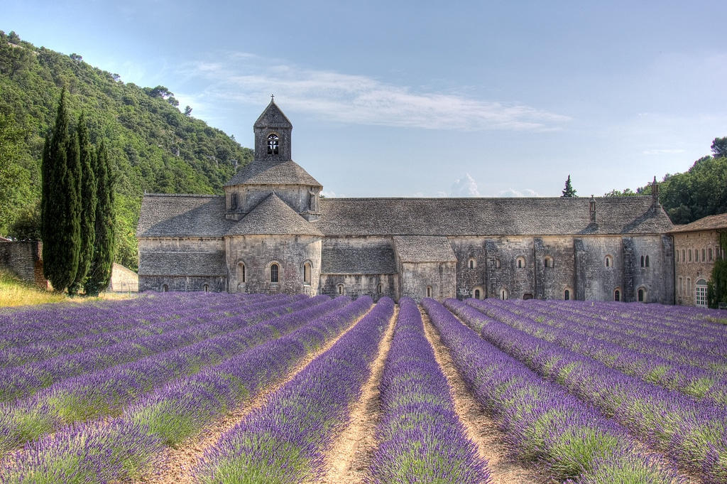 Provence, Lavender in France, Chateau Sonoma, Bastille Day