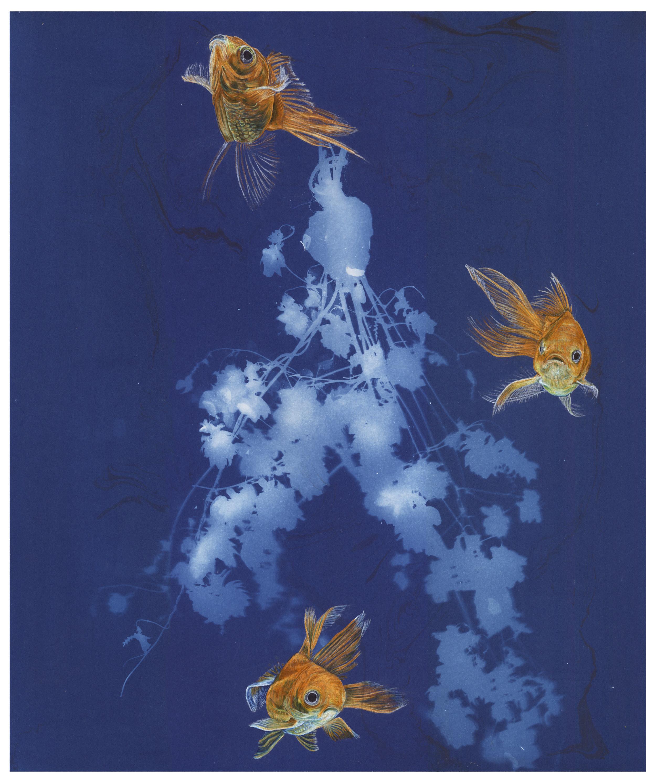3 Little Fish