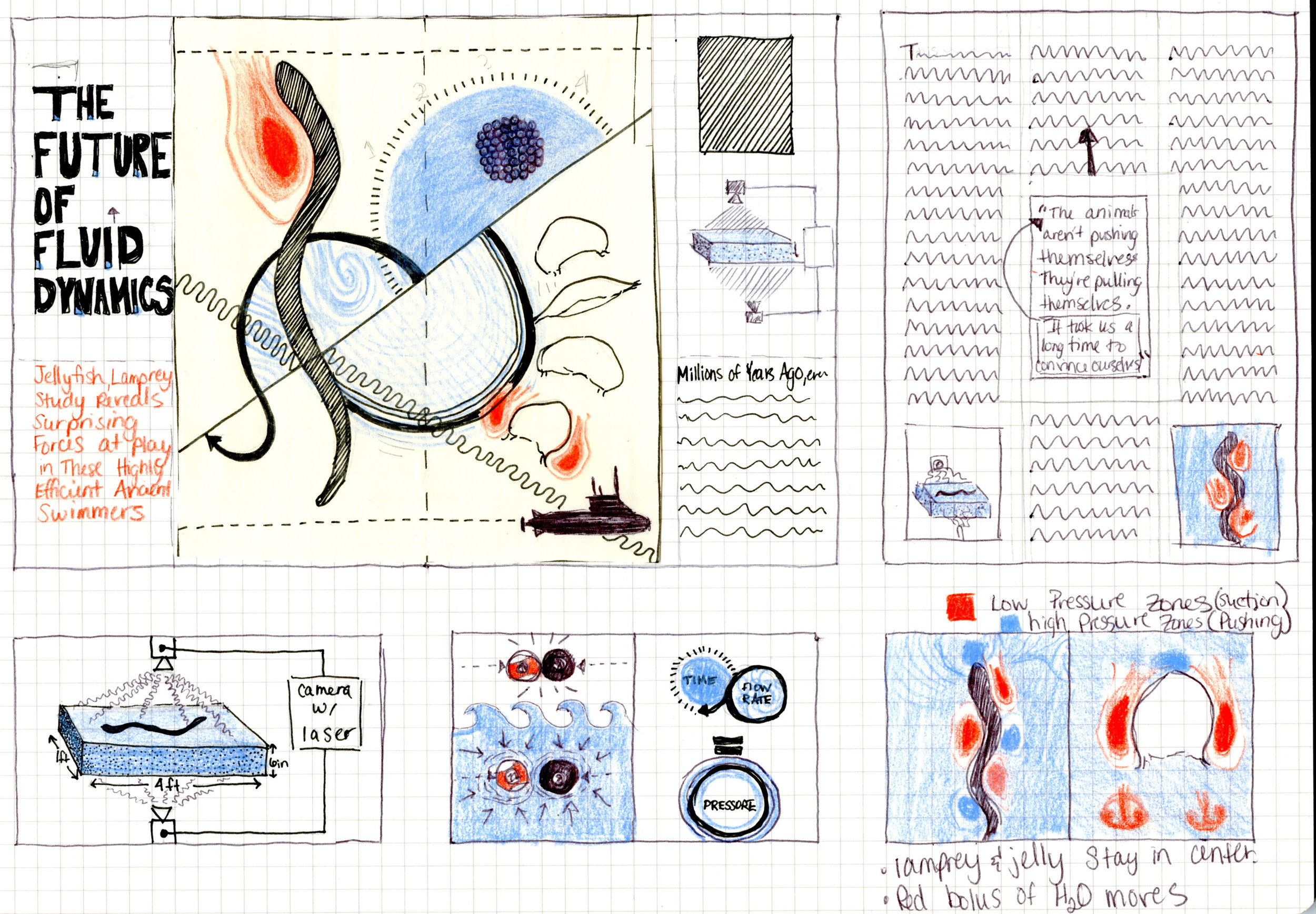 Fluid Dynamics Article Design & Illustration Sketch