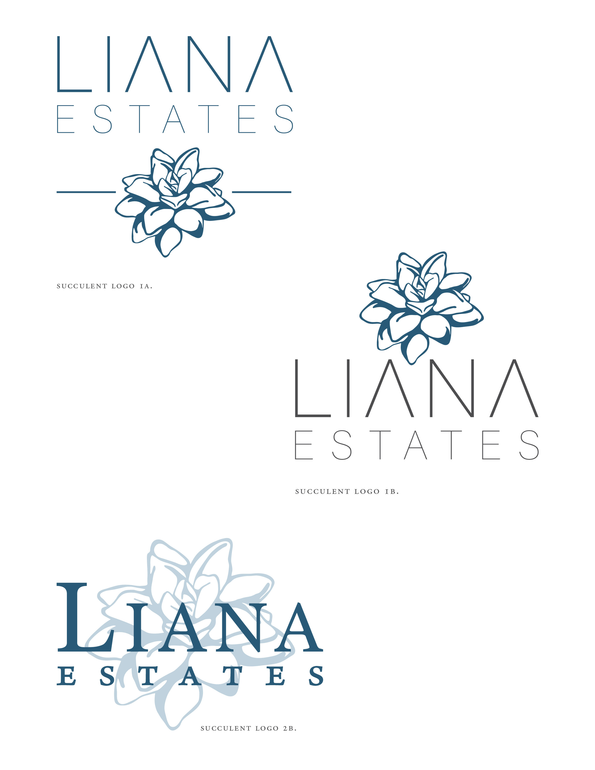 Options! Options! Options!   For a client that has a very vague idea of the aesthetic they are looking to build on, having lots of options can help them narrow things down. Seeing what you don't want will always (eventually) lead you to what you do want. Here we have some options for logos that were presented.