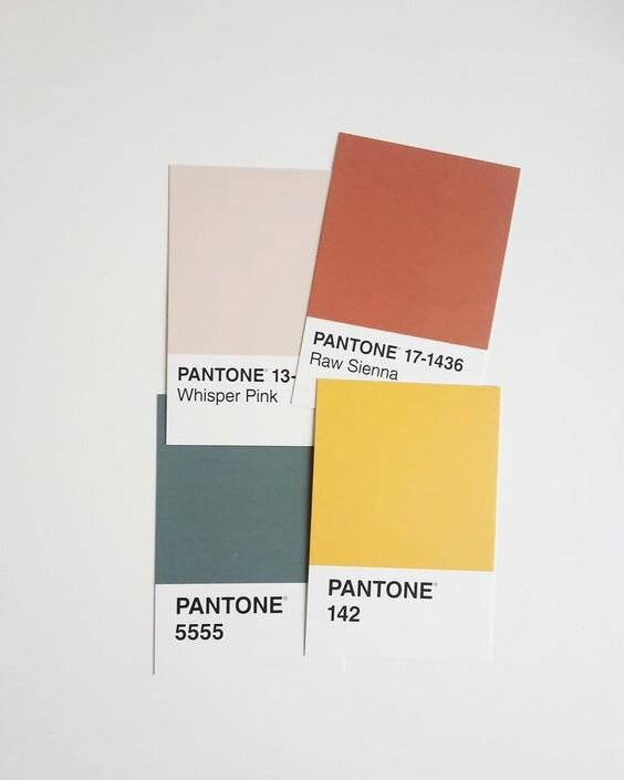 COLOR PALETTE INSPIRATION   This is an image from one of the pins Ainslie added to our collaborative Pinterest board. It as a great starting point for developing color palettes for both this concept as well as others to be presented.