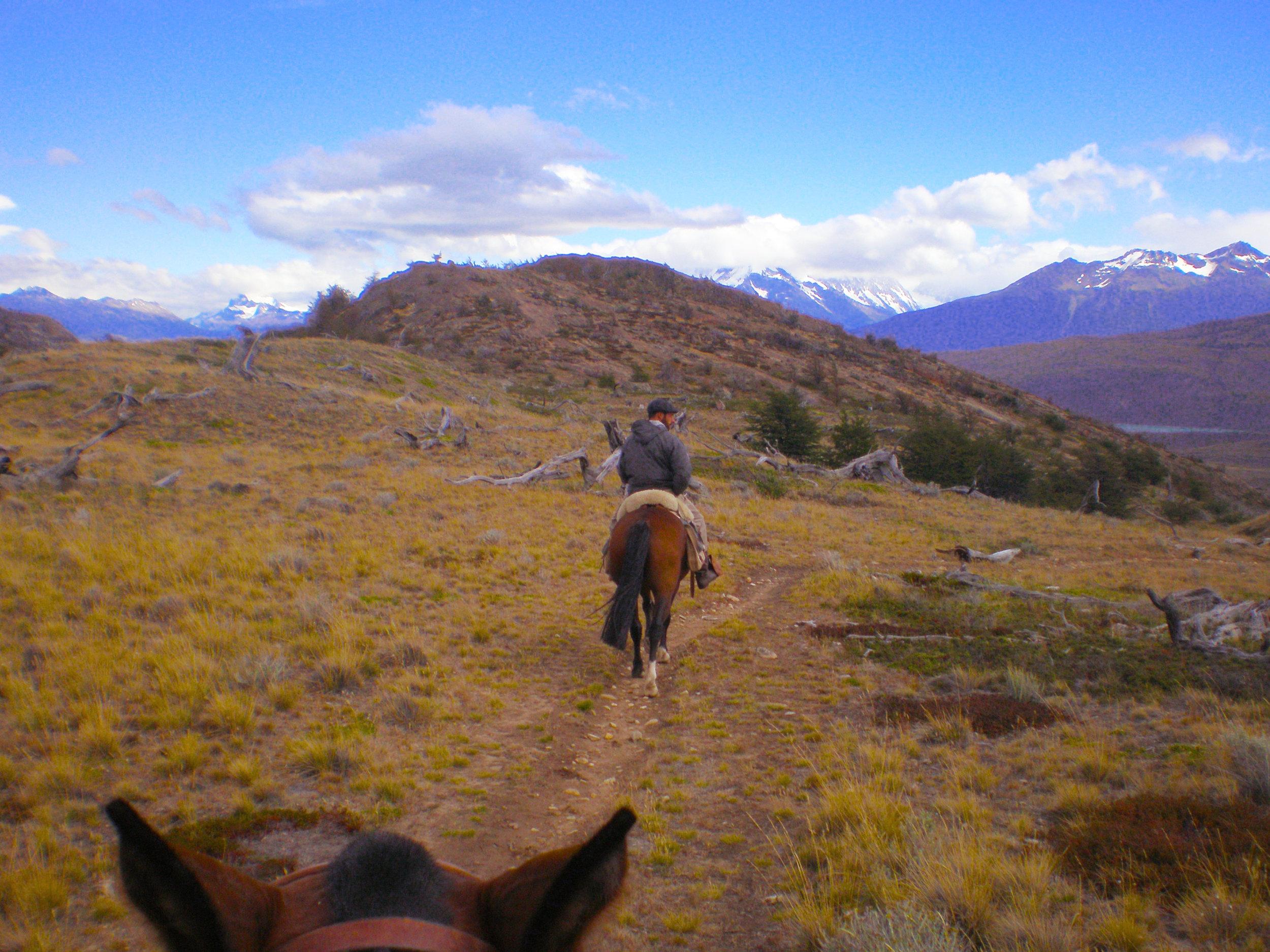 HorseViewEstanciaCristina.jpg
