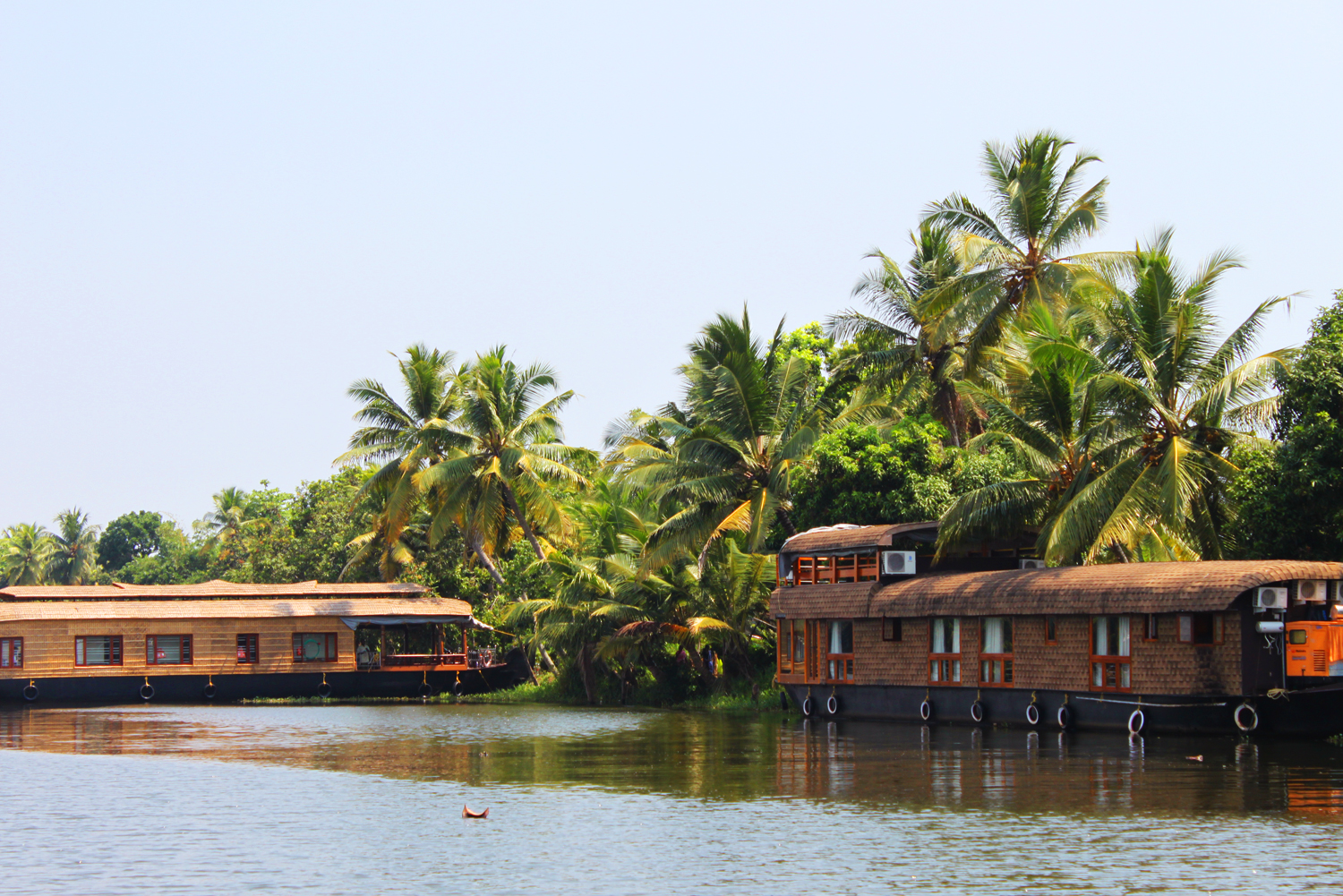 <strong> South India</strong><p>Houseboats, Backwaters & History  »</p>