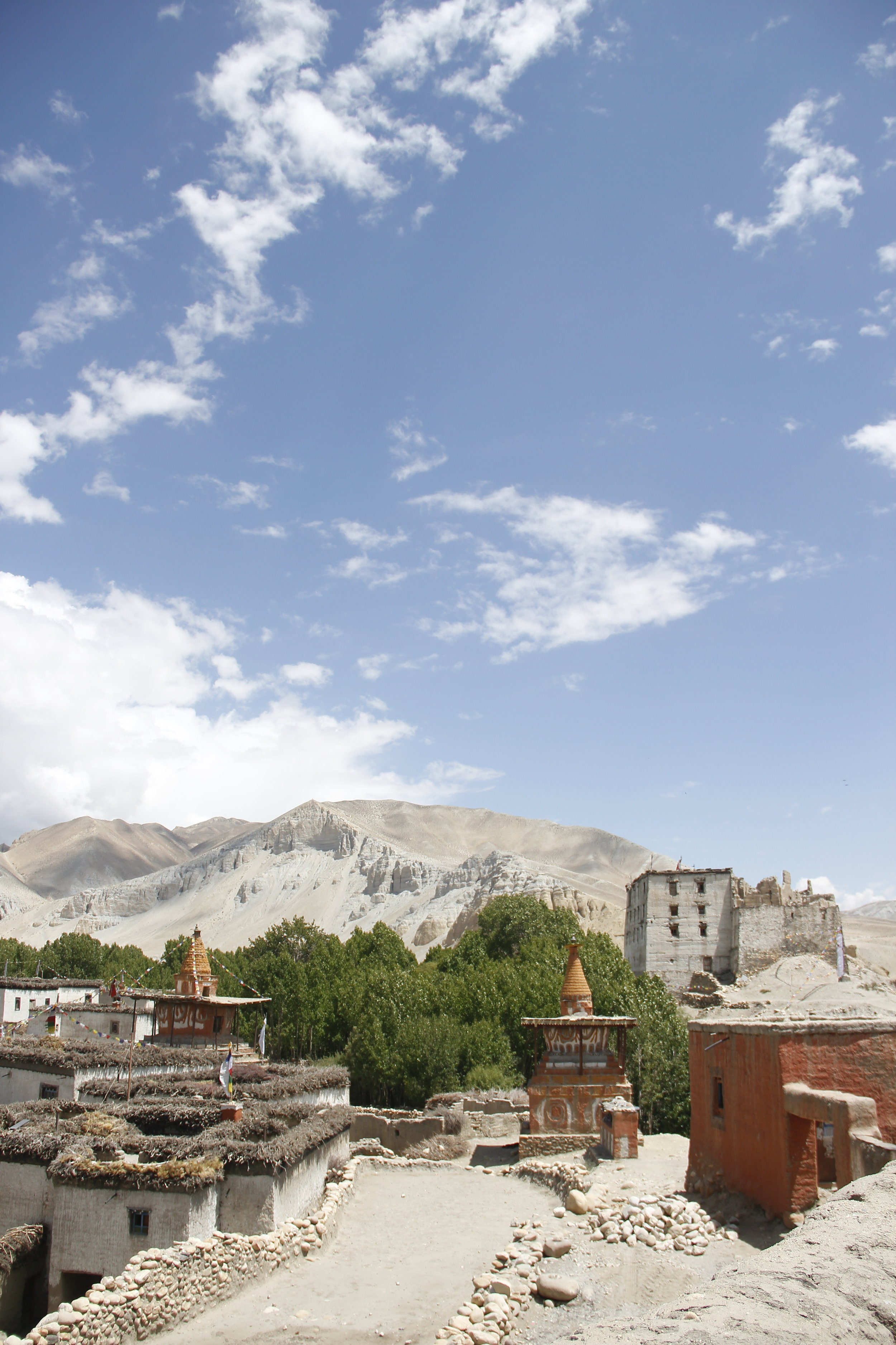 <strong>Studying Abroad in the Himalayas</strong><p>The University of Vermont</p>