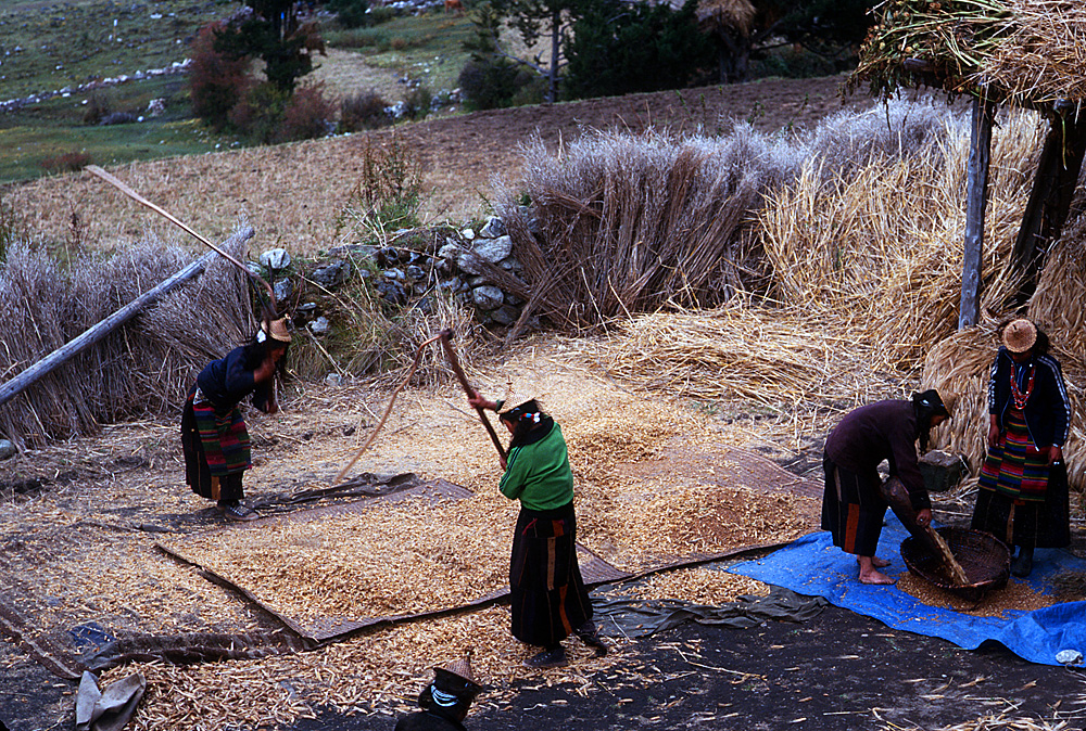 Bhutan.Laya.WorkingWomen.jpg
