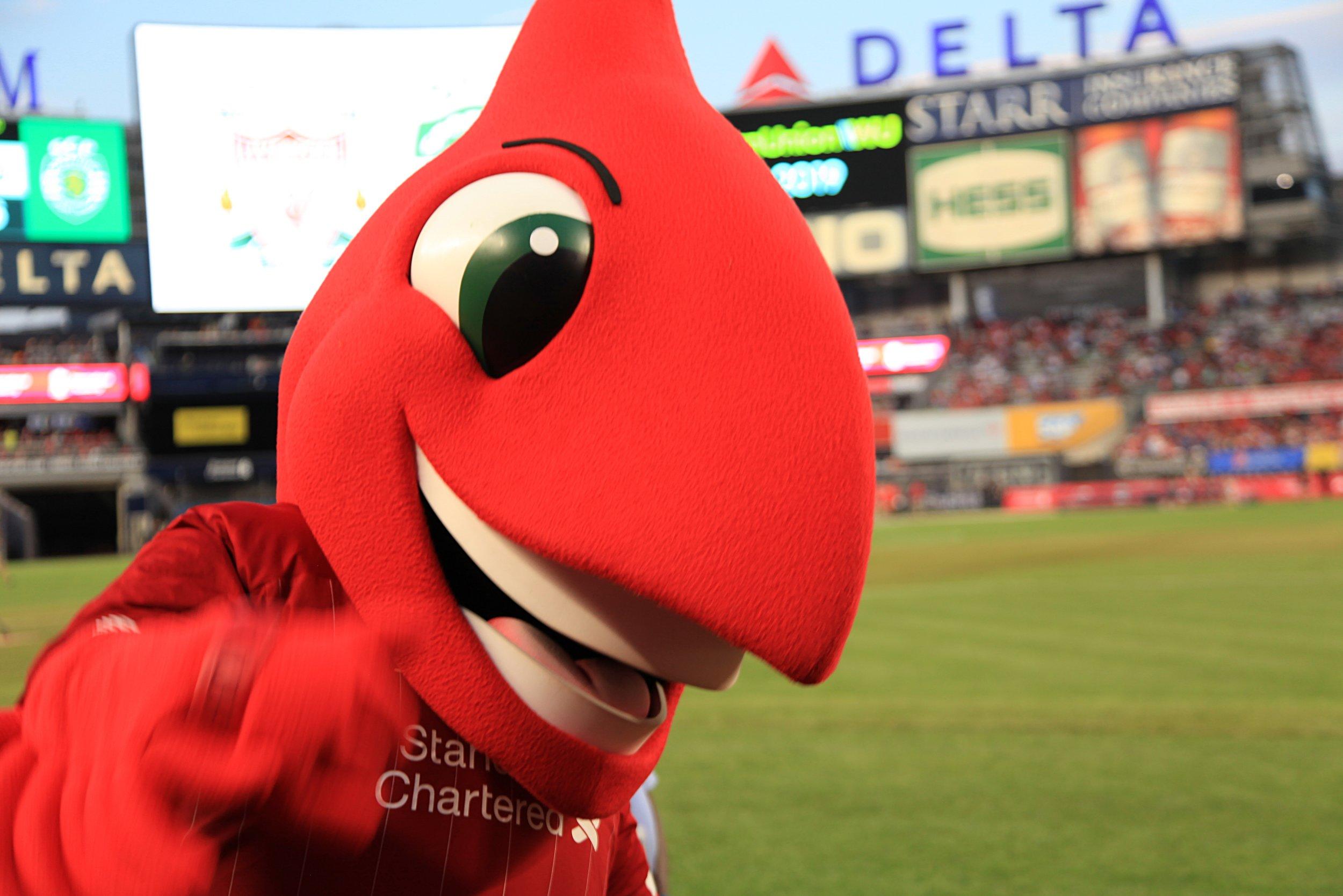 Big Red saying hello.