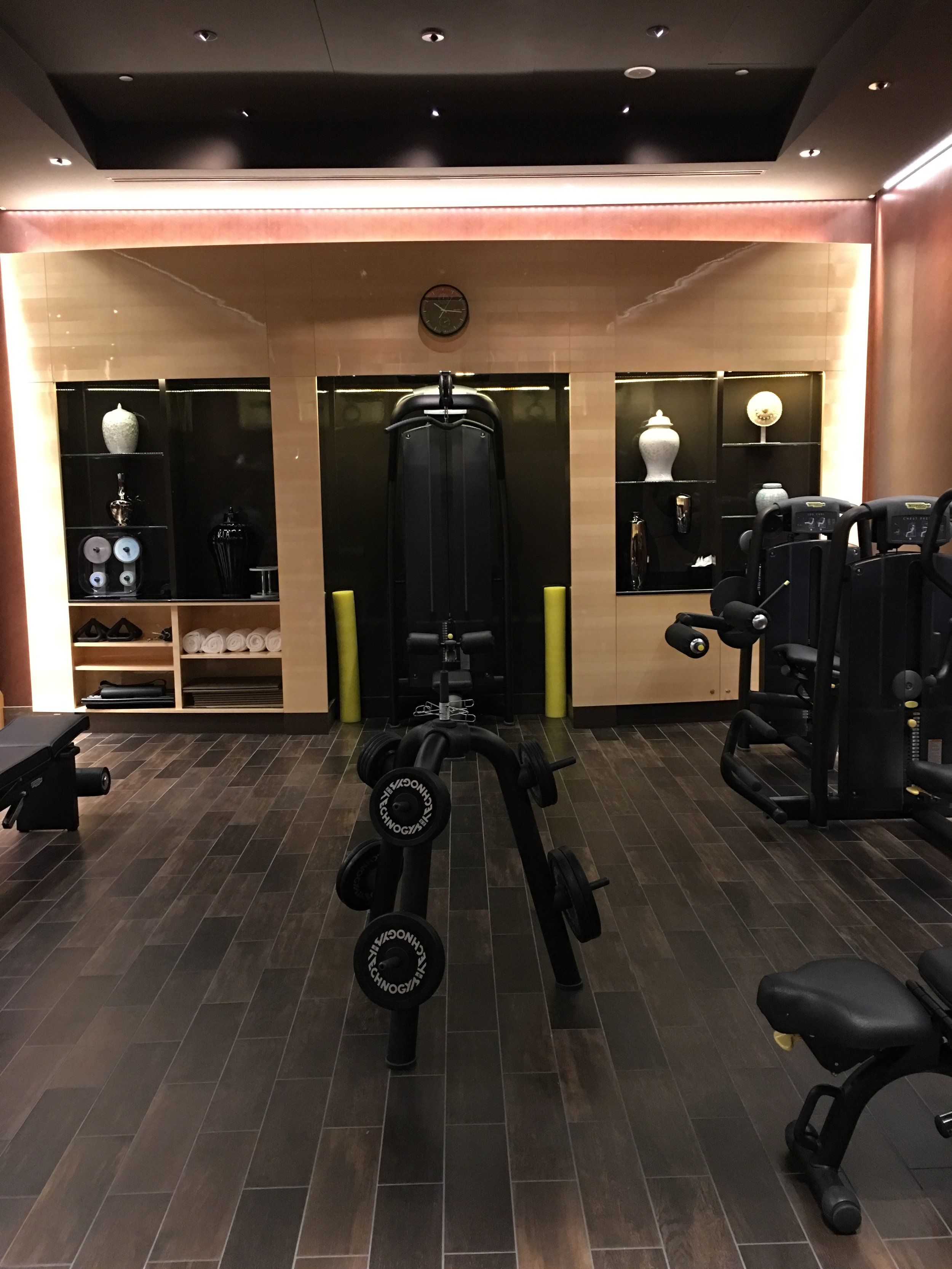 The gym at Prince de Galles, hotel review to come!