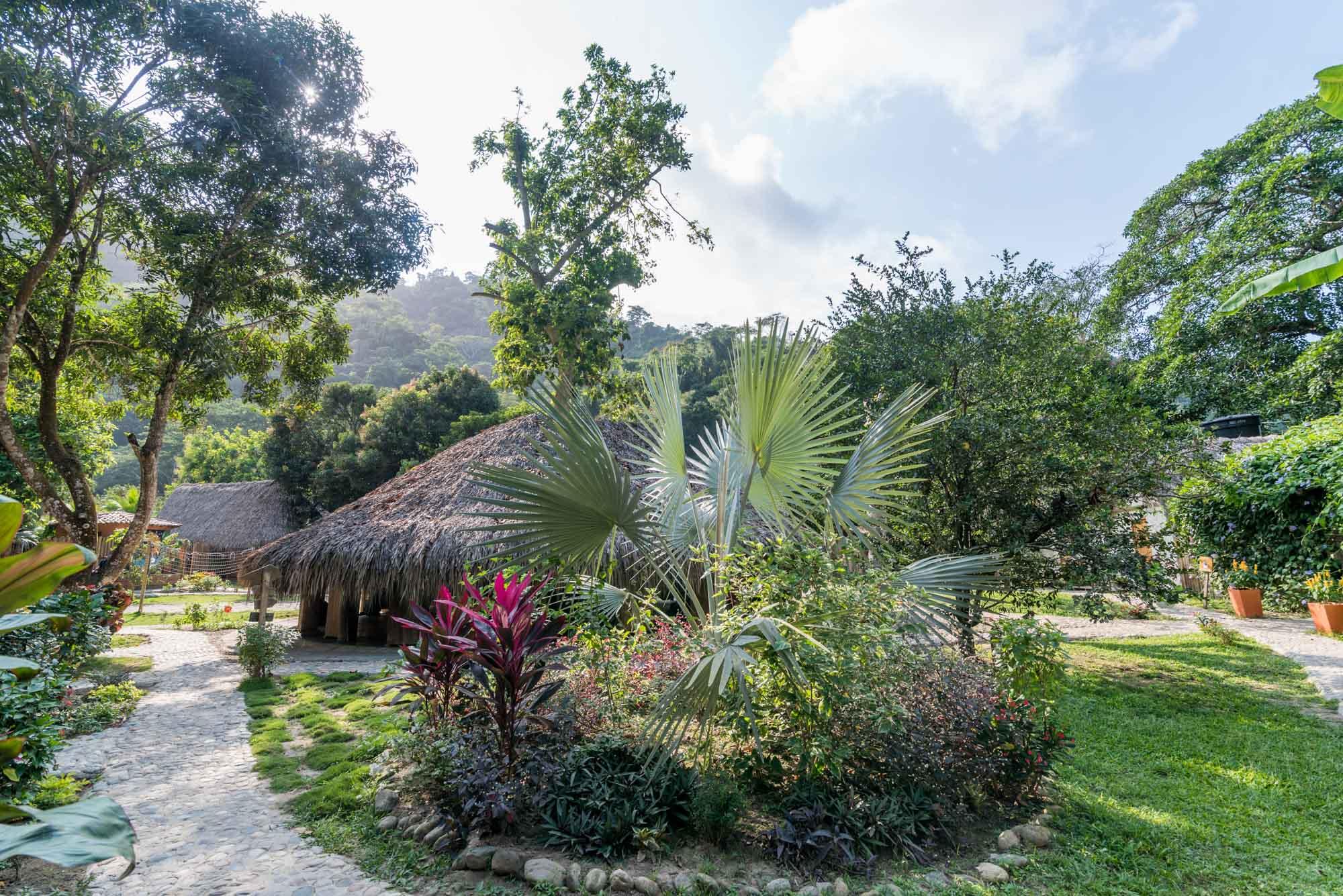 Garden_El Rio