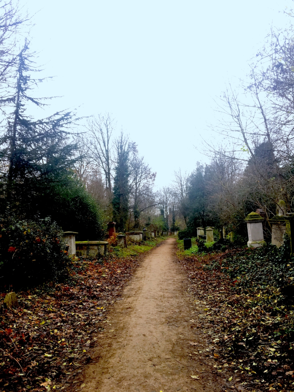 Abney Park Cementery during my 6k run