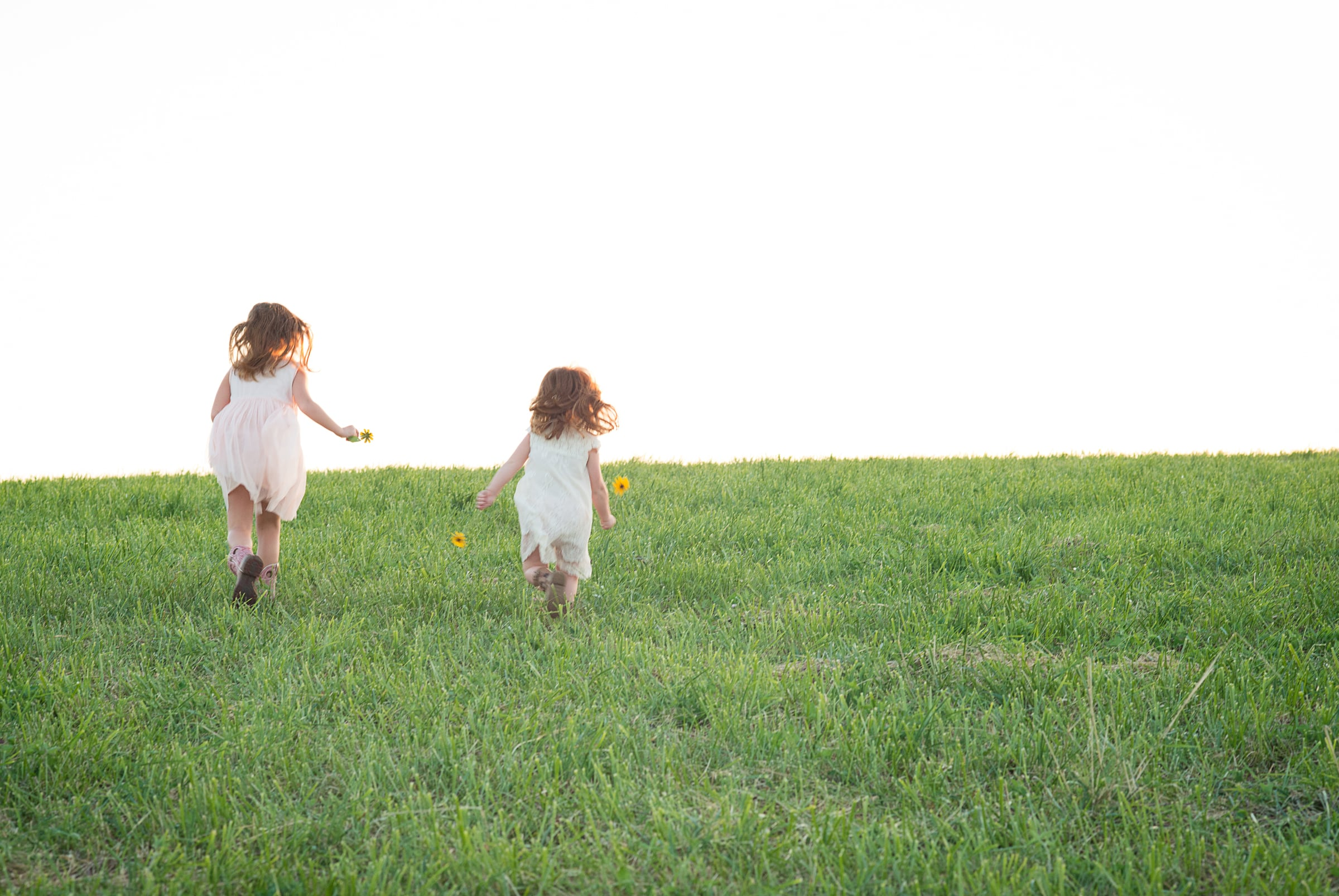 Two little girls run through a meadow at sunset