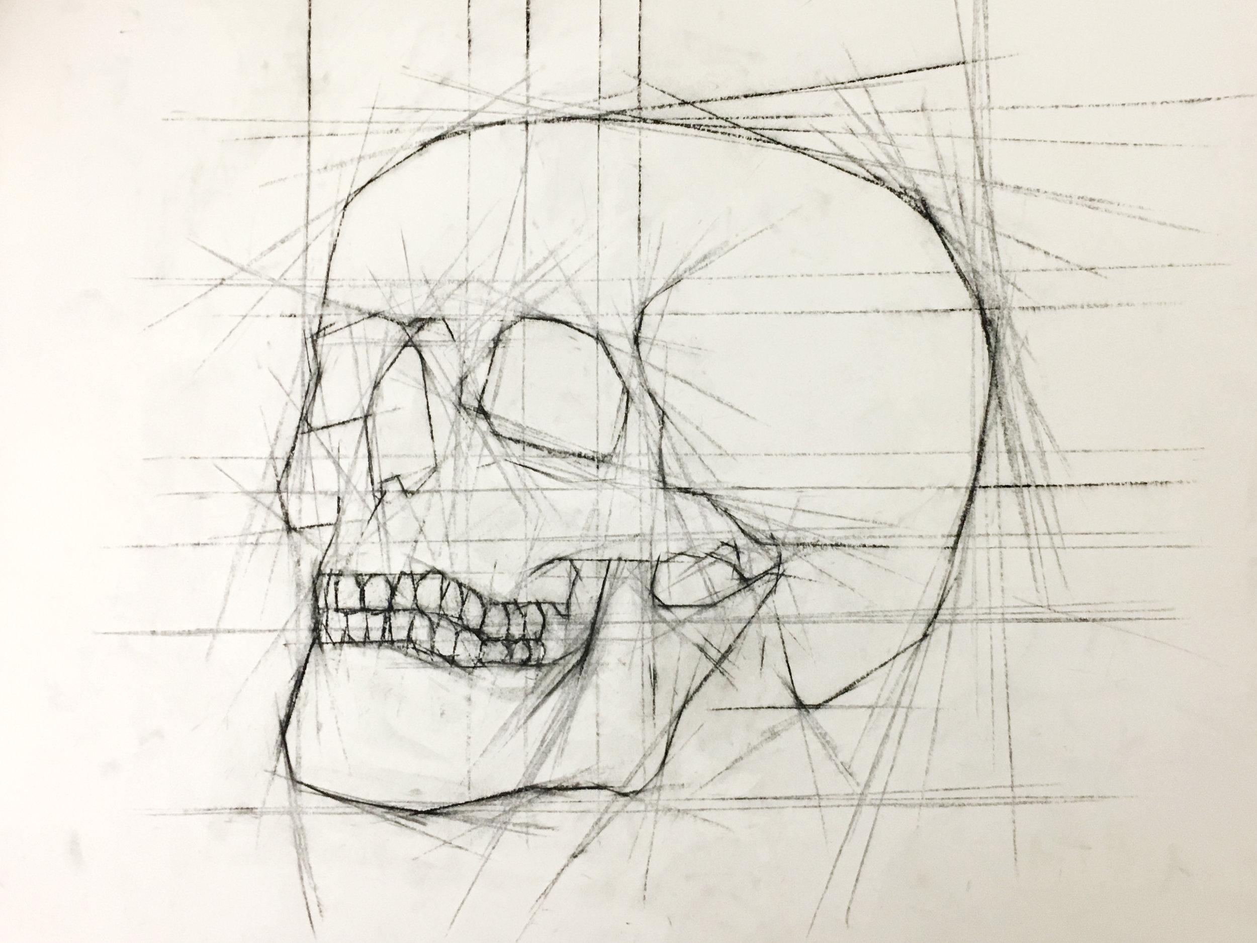 Skulls 2.jpg