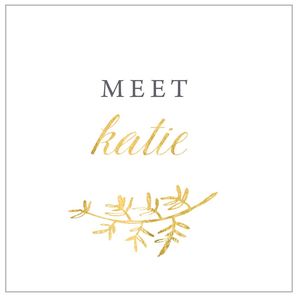 meet_katie_box.jpg