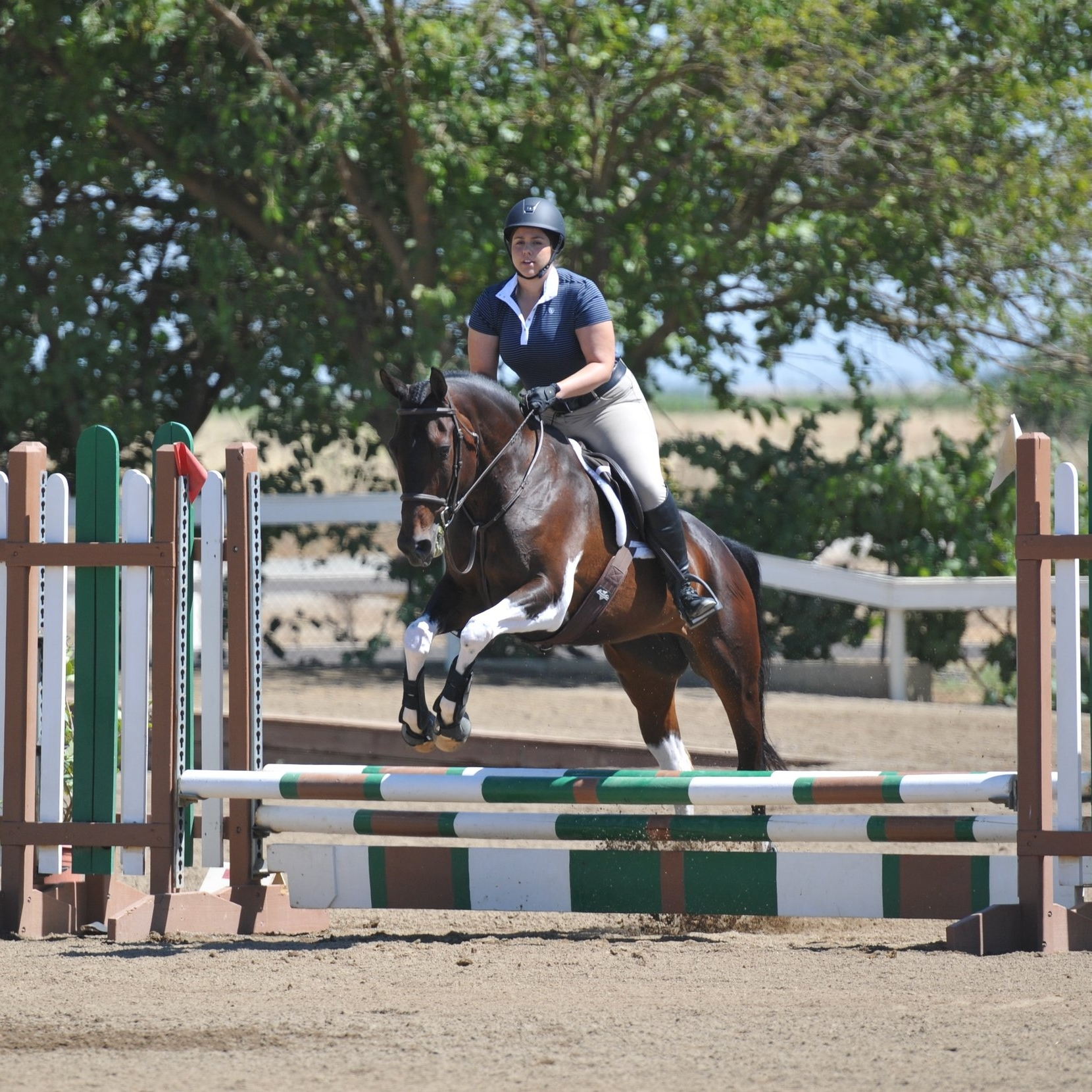 """Janelle's drive and dedication to our sport is uplifting to everyone around her.  She is not only a great rider but a wonderful horsewoman, spending as much time as she can caring for her horse """"Sophia.""""  Janelle and Sophia began their jumping career when joining Pyramid in 2015, and compete in the Hunter and Equitation rings. With much success in just the last year, we see many victories in their future in the Jumper ring also.  Janelle makes everyones life run smoother at Pyramid through scheduling and organization."""
