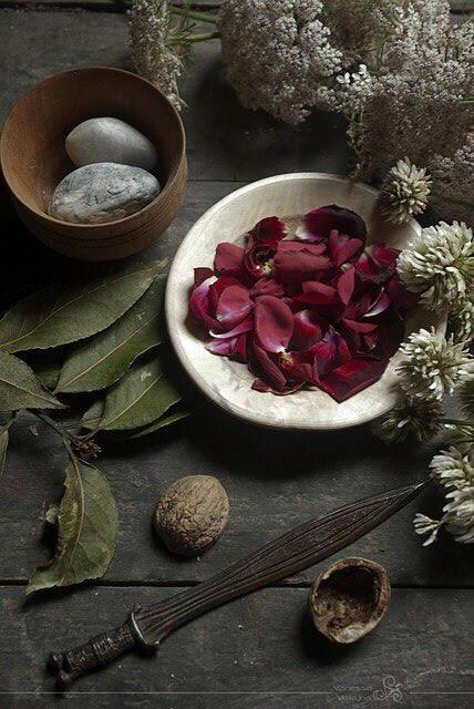 ciscandra-nostalghia-leaves.jpg