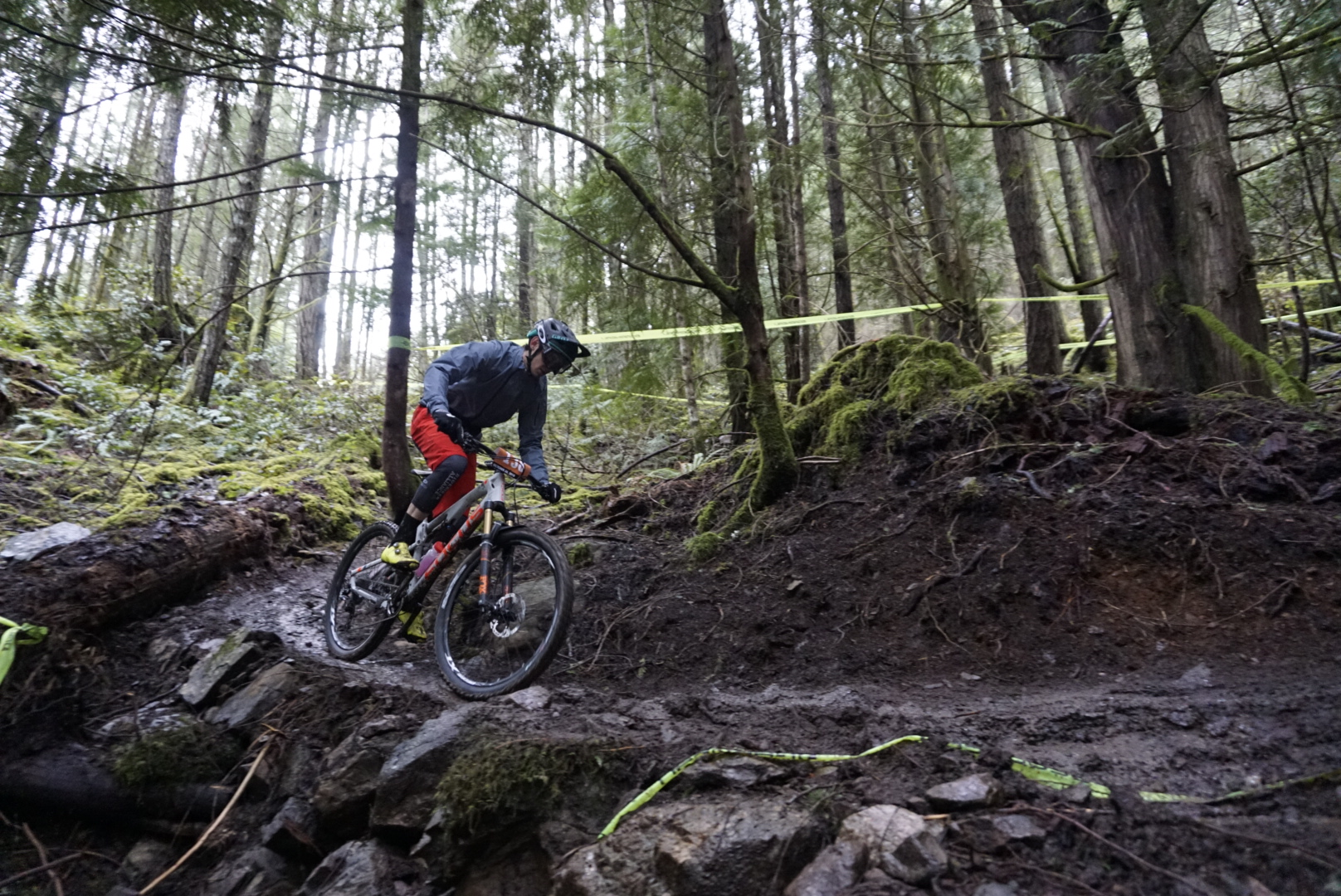 THIS is why I love Vancouver Island. Amazing trails, and epic forests.
