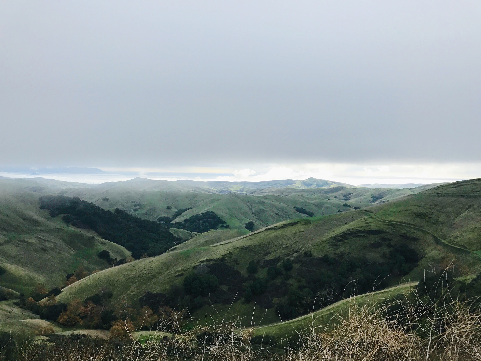View above Cambria from HWY 46