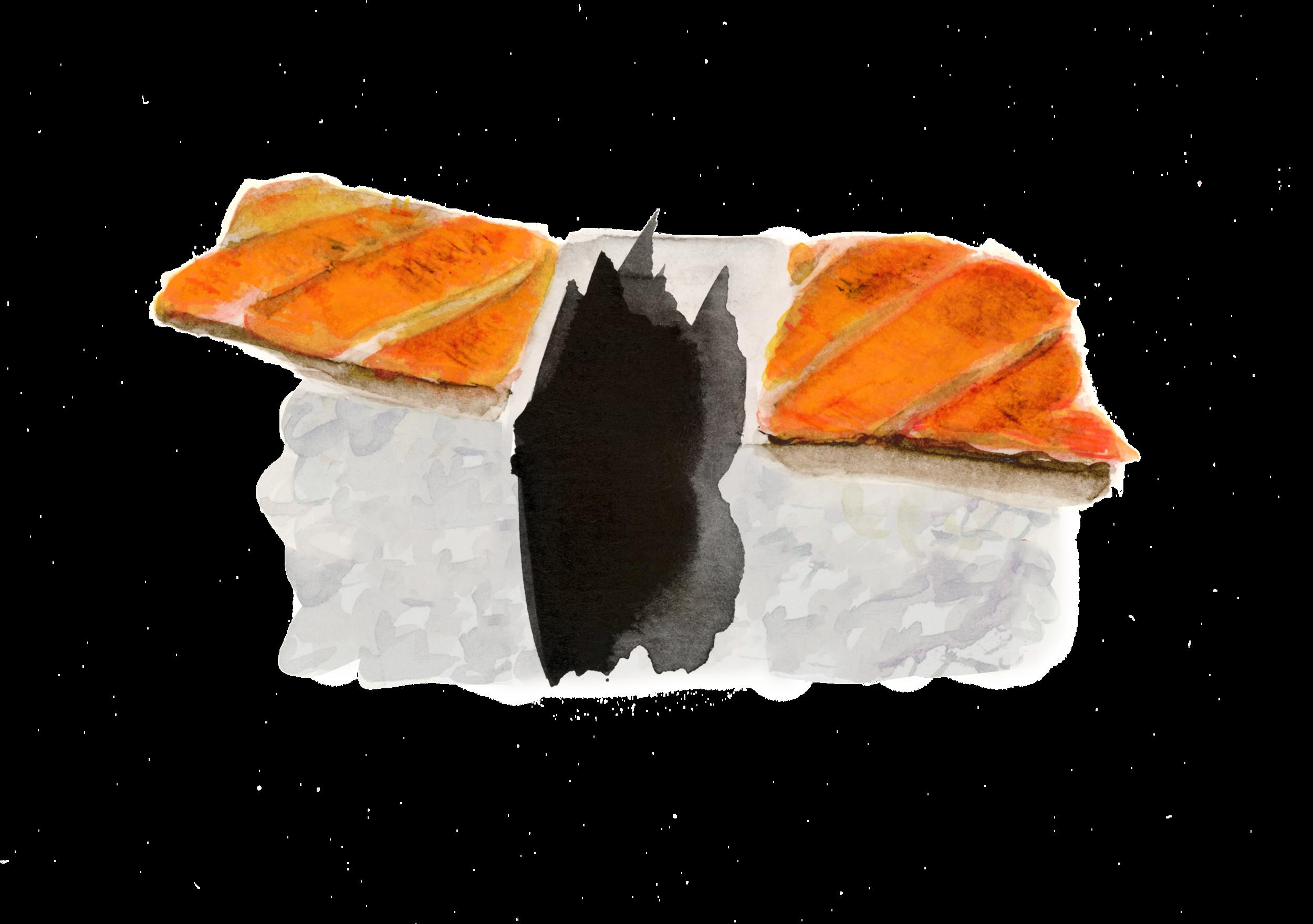 14_sushi_salmao-skin_r2.png