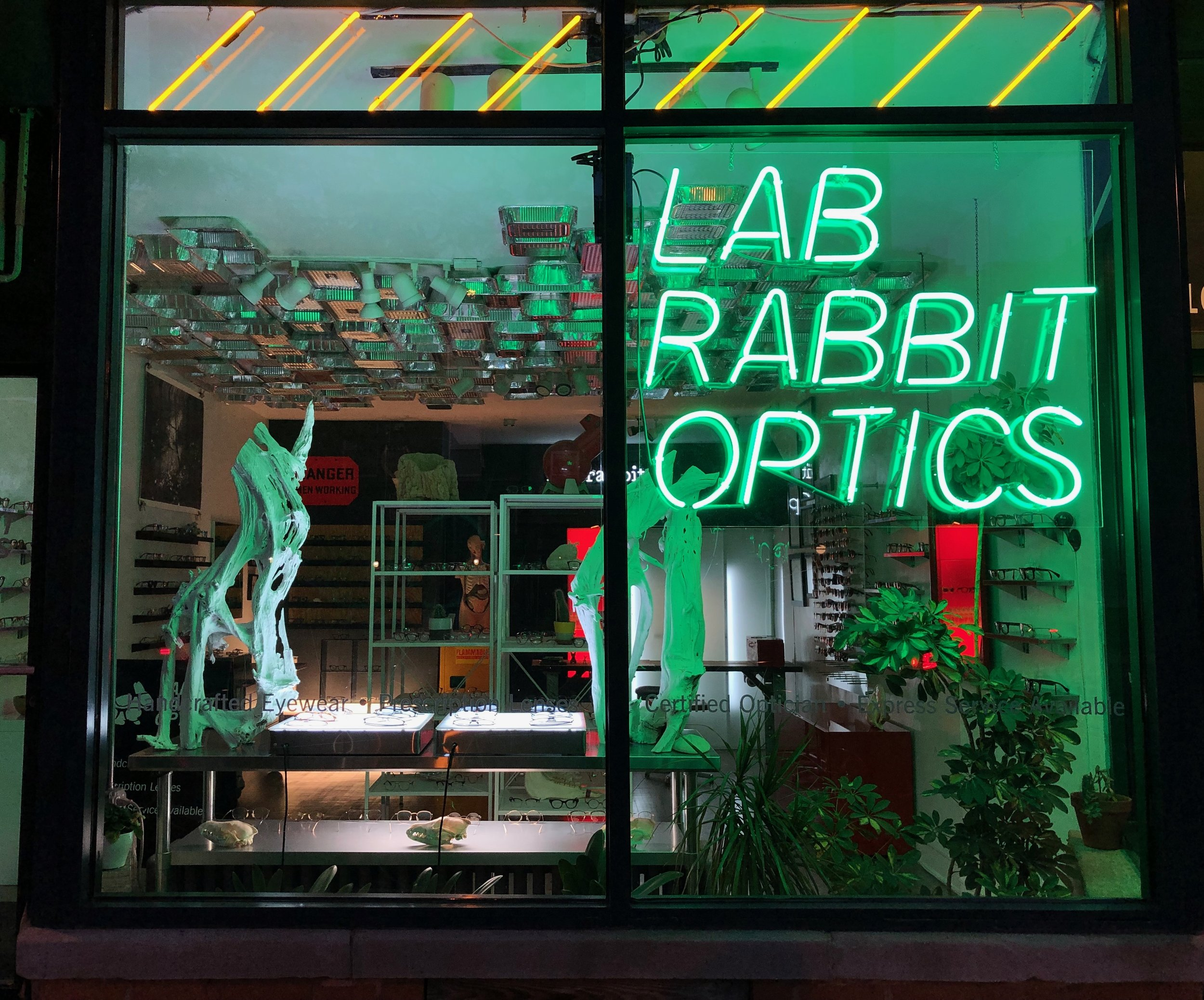 lab-rabbit-chicago-optical-near-me.jpeg