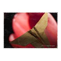 Brown Paper Bag Origami.jpg