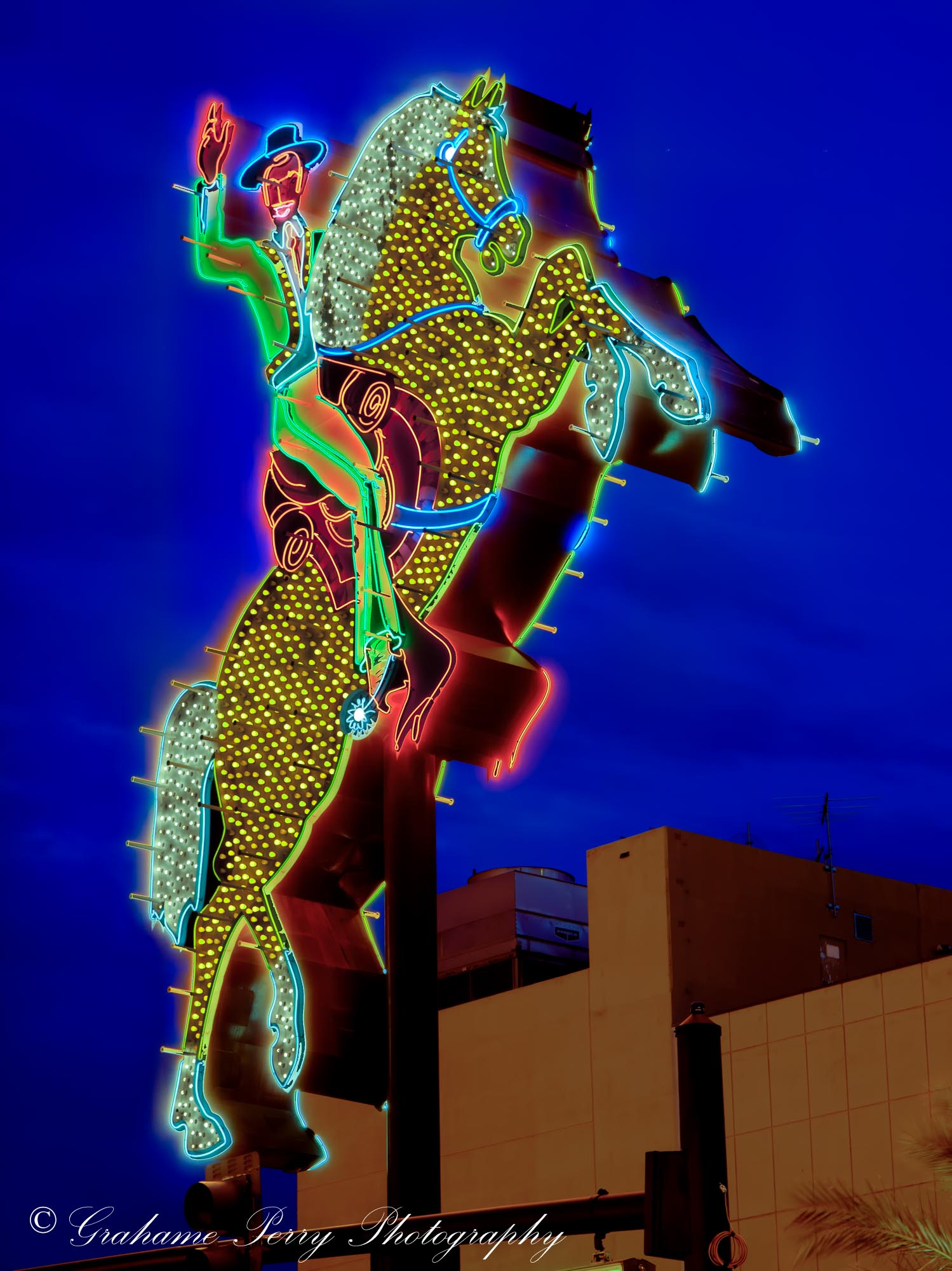 Grahame Perry - 81 Bees - Night Show - Neon Cowboy.jpg