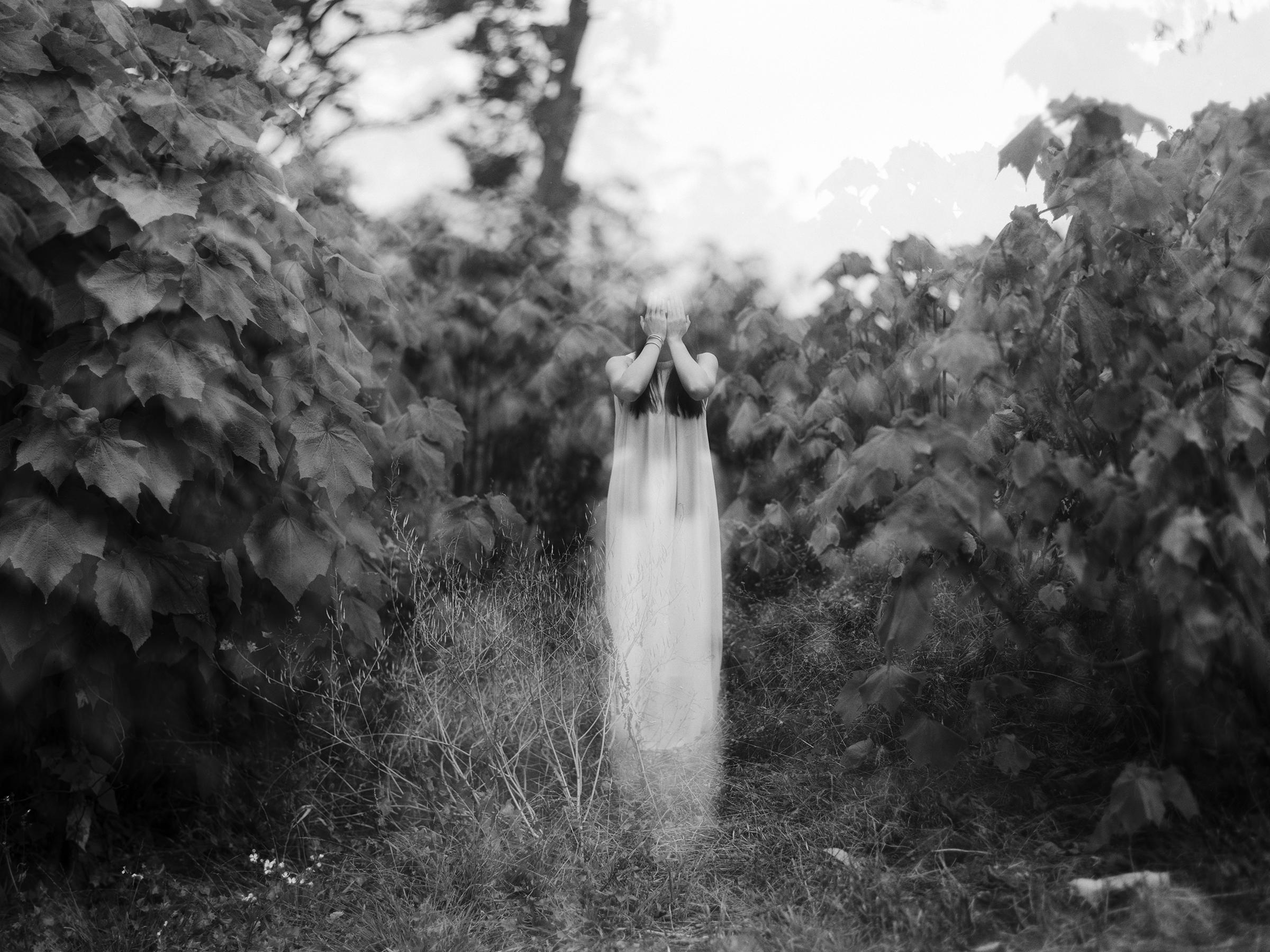 Gordon Szeto, Untitled
