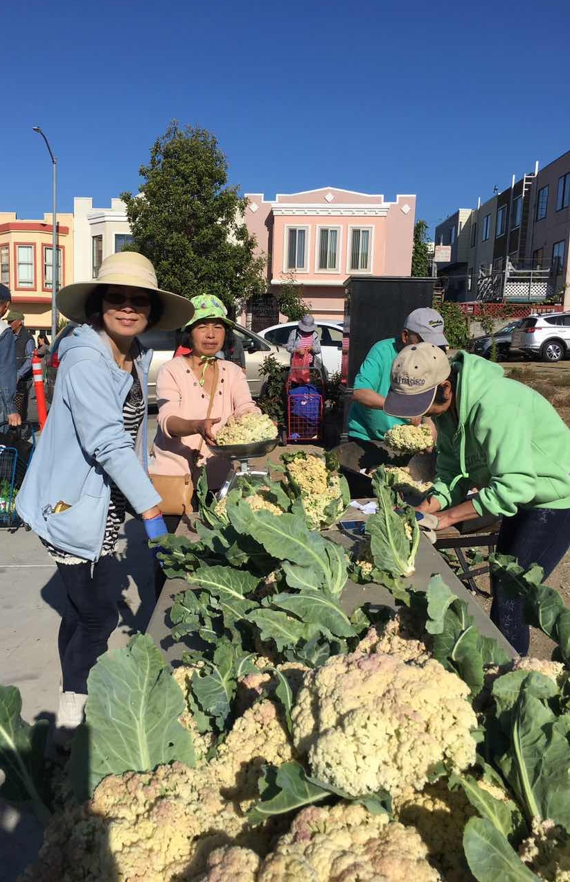Communal planting lanes produce surplus crops as we develop our own produce stand and join farmers markets in the neighborhood and city.