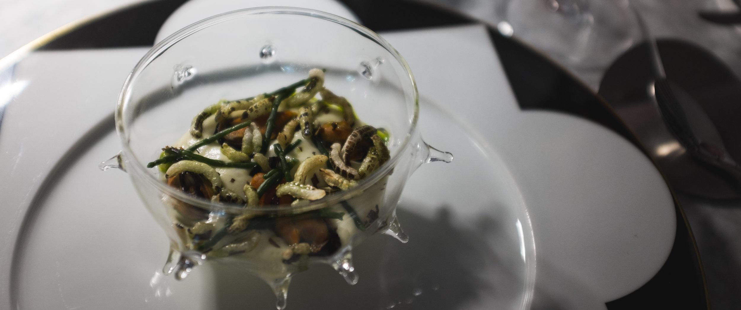 Felix Lo Basso. Sūrio putėsiai su jūros šparagais ir ryžių spragėsiais.  Felix Lo Basso. Mousse with cheese, sea asparagus and puffed rice.