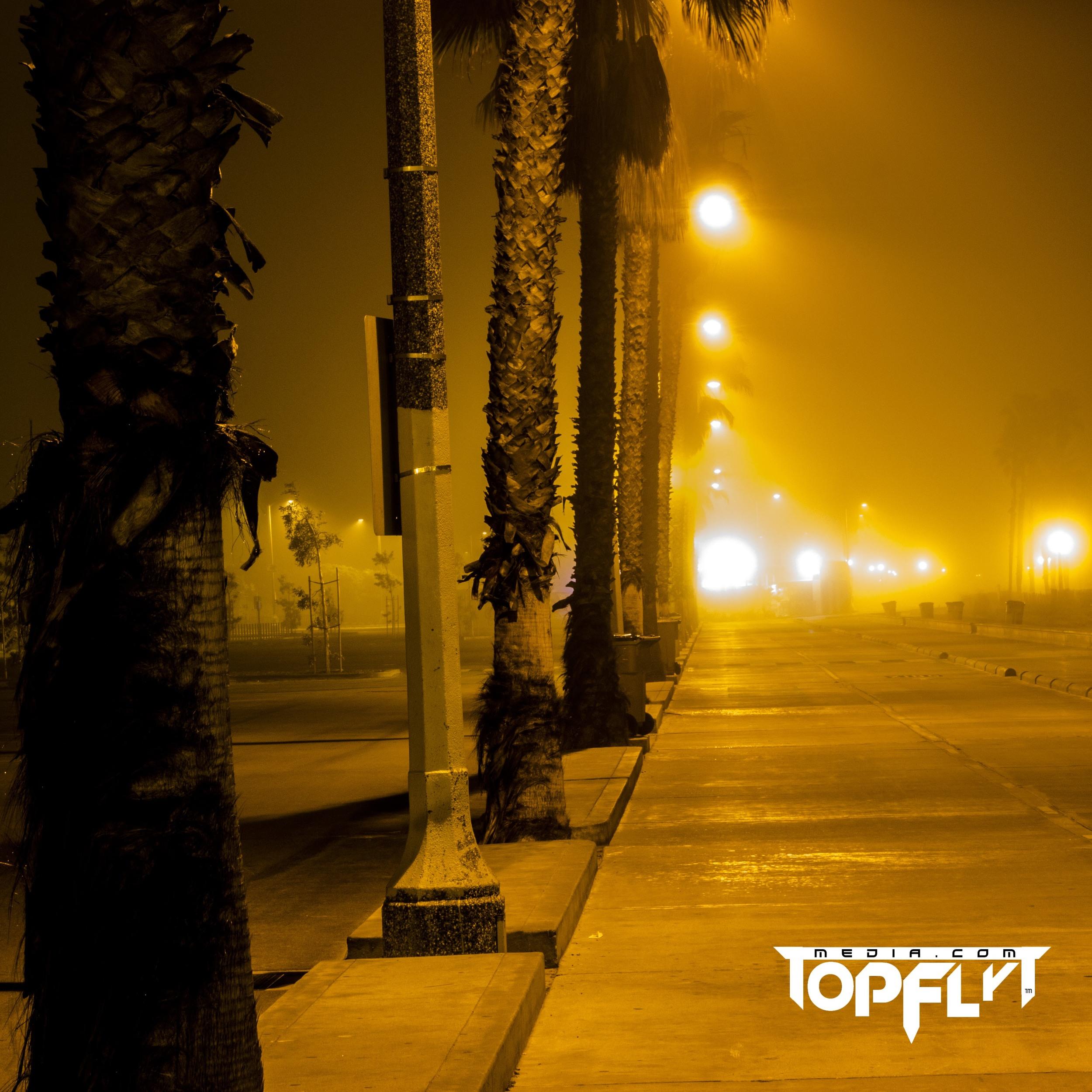 LA Fog 01-17-16_58.jpg
