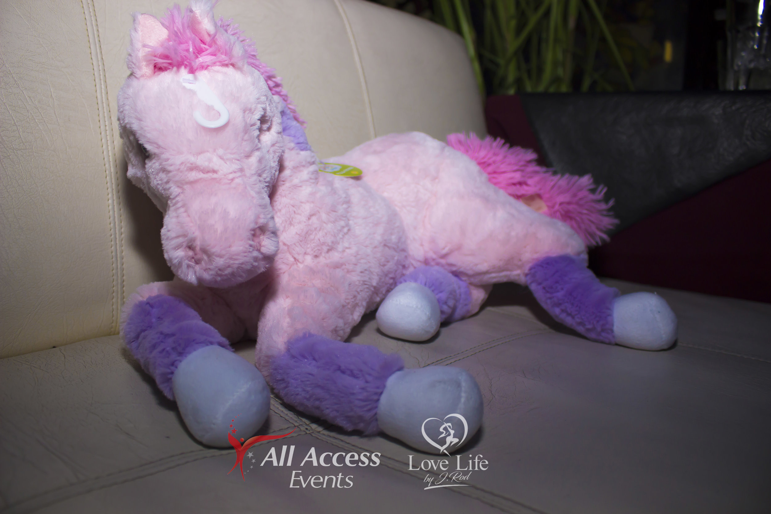 All Access Events Toy Drive_38.jpg
