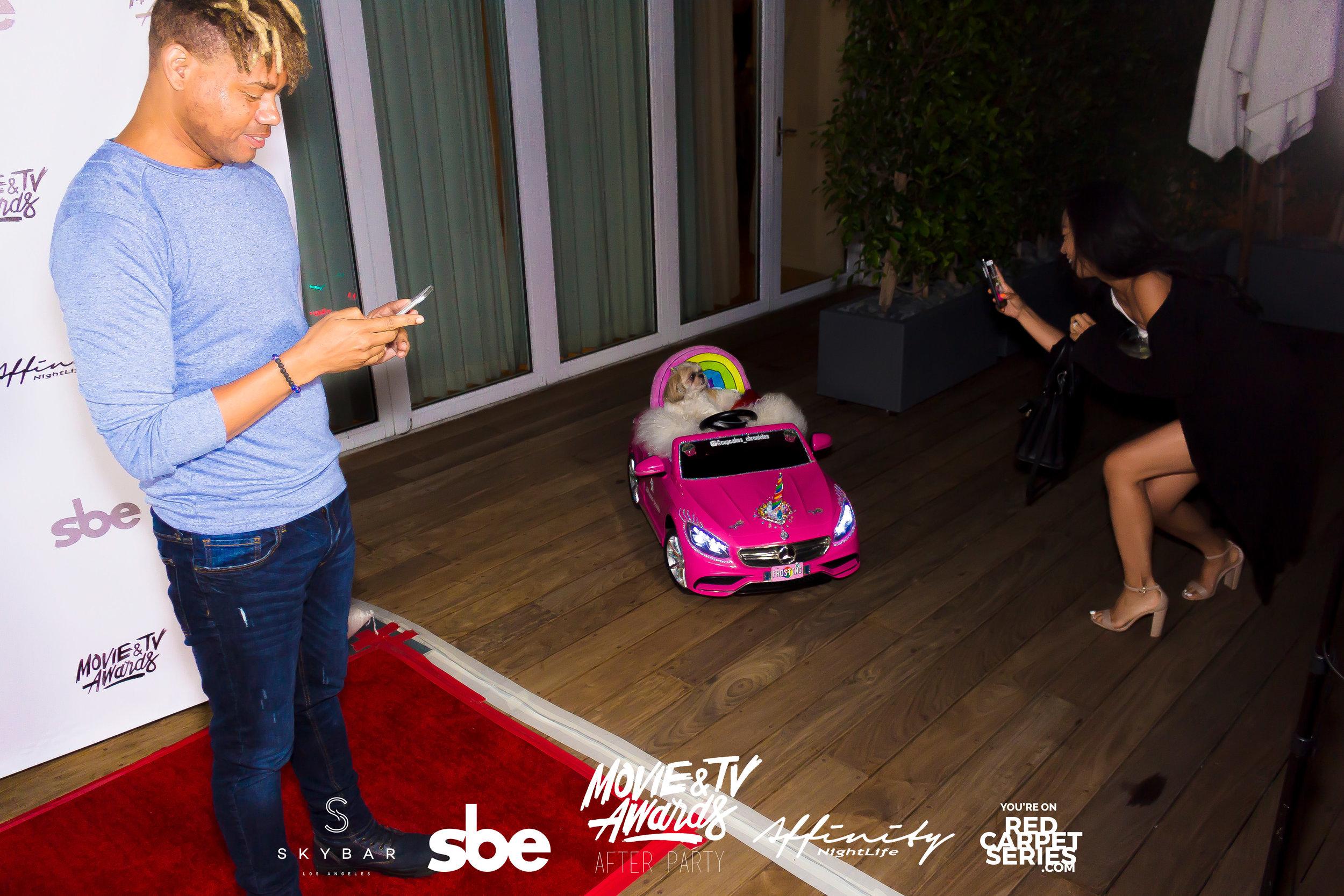 Affinity Nightlife MTV Movie & TV Awards After Party - Skybar at Mondrian - 06-15-19 - Vol. 1_24.jpg