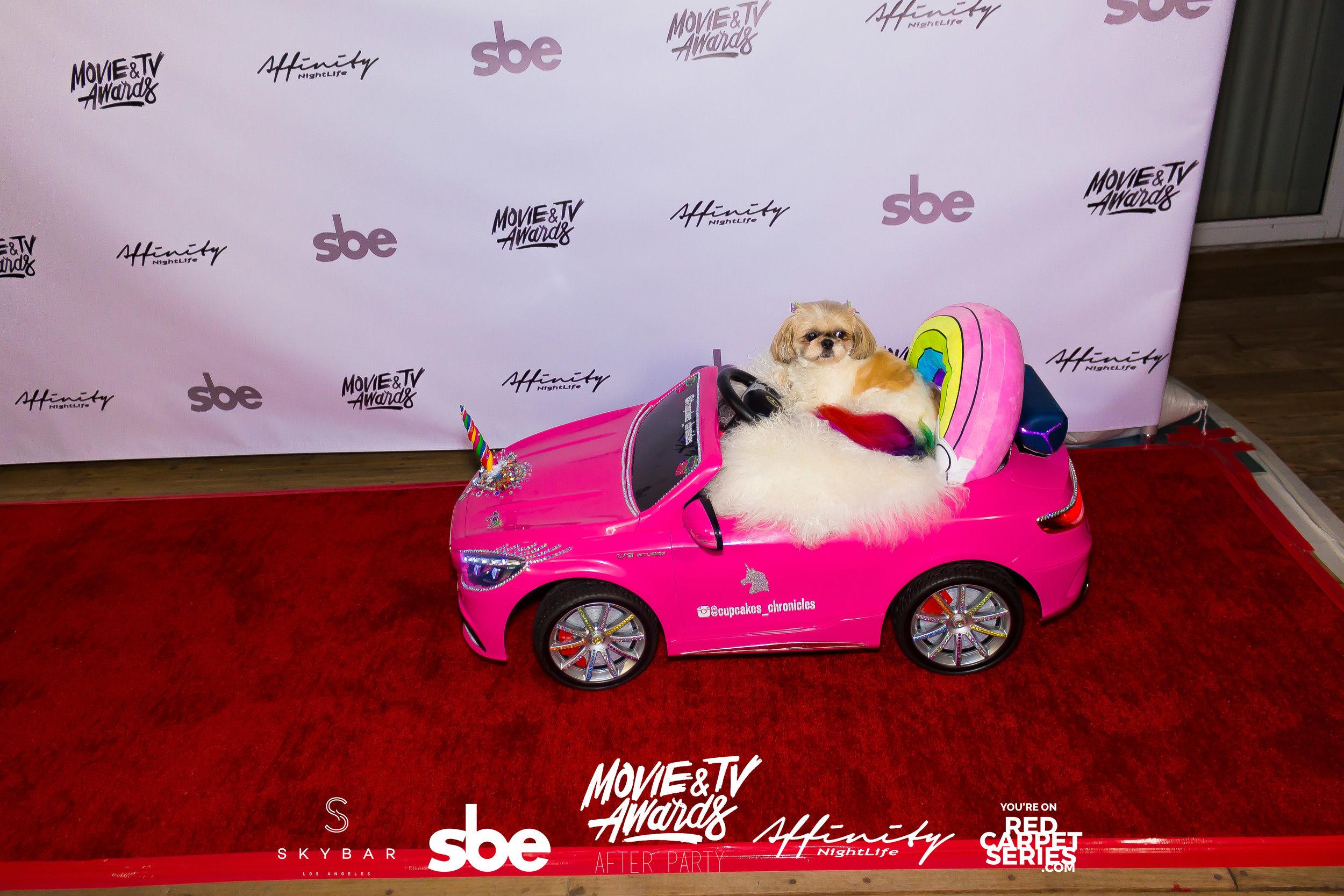Affinity Nightlife MTV Movie & TV Awards After Party - Skybar at Mondrian - 06-15-19 - Vol. 1_26.jpg