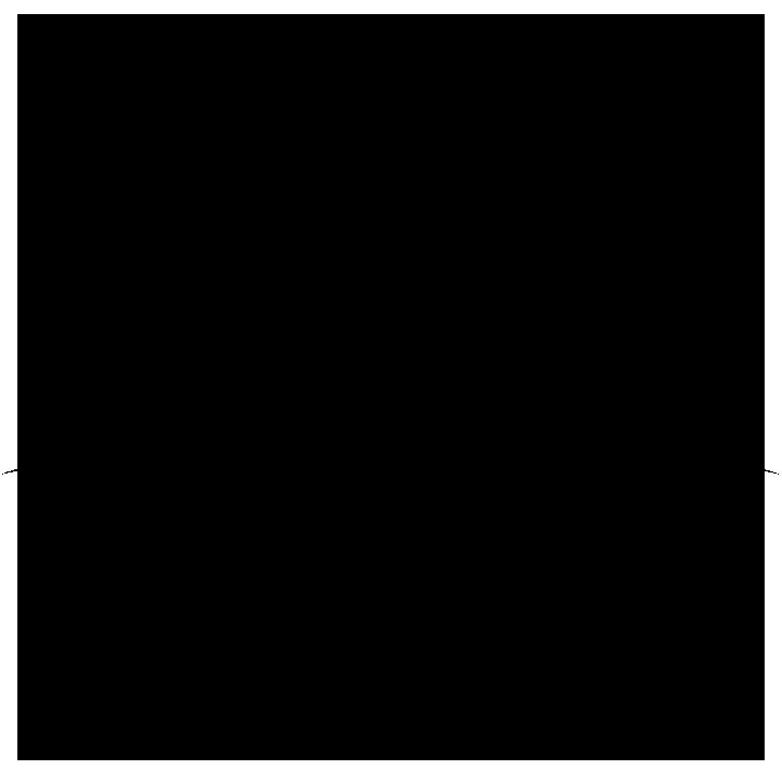 Belasco Theatre Logo