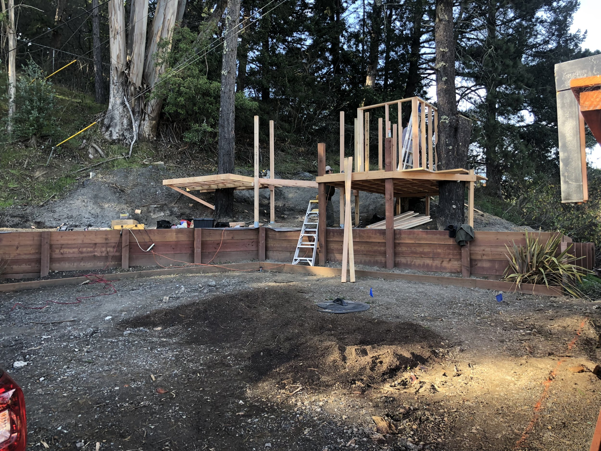Treehouse in Marin, Mill Valley, Francisco's Gardening and Maintenance - 6 framing.jpeg
