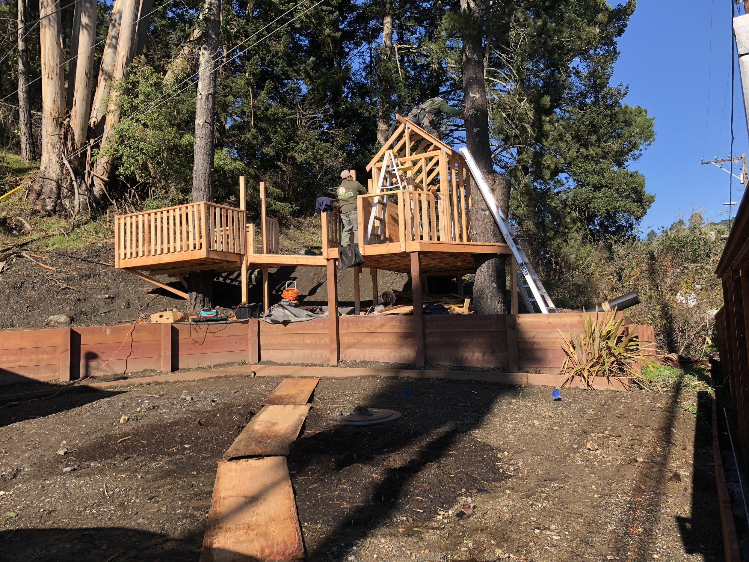 Treehouse in Marin, Mill Valley, Francisco's Gardening and Maintenance - 12 framing and roof shingles 2.jpeg