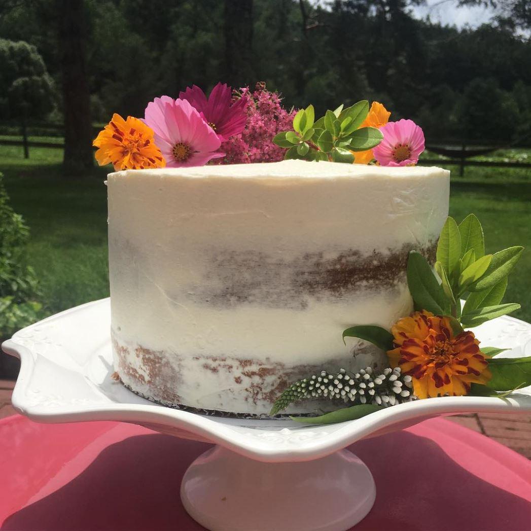 Outdoor cake.JPG