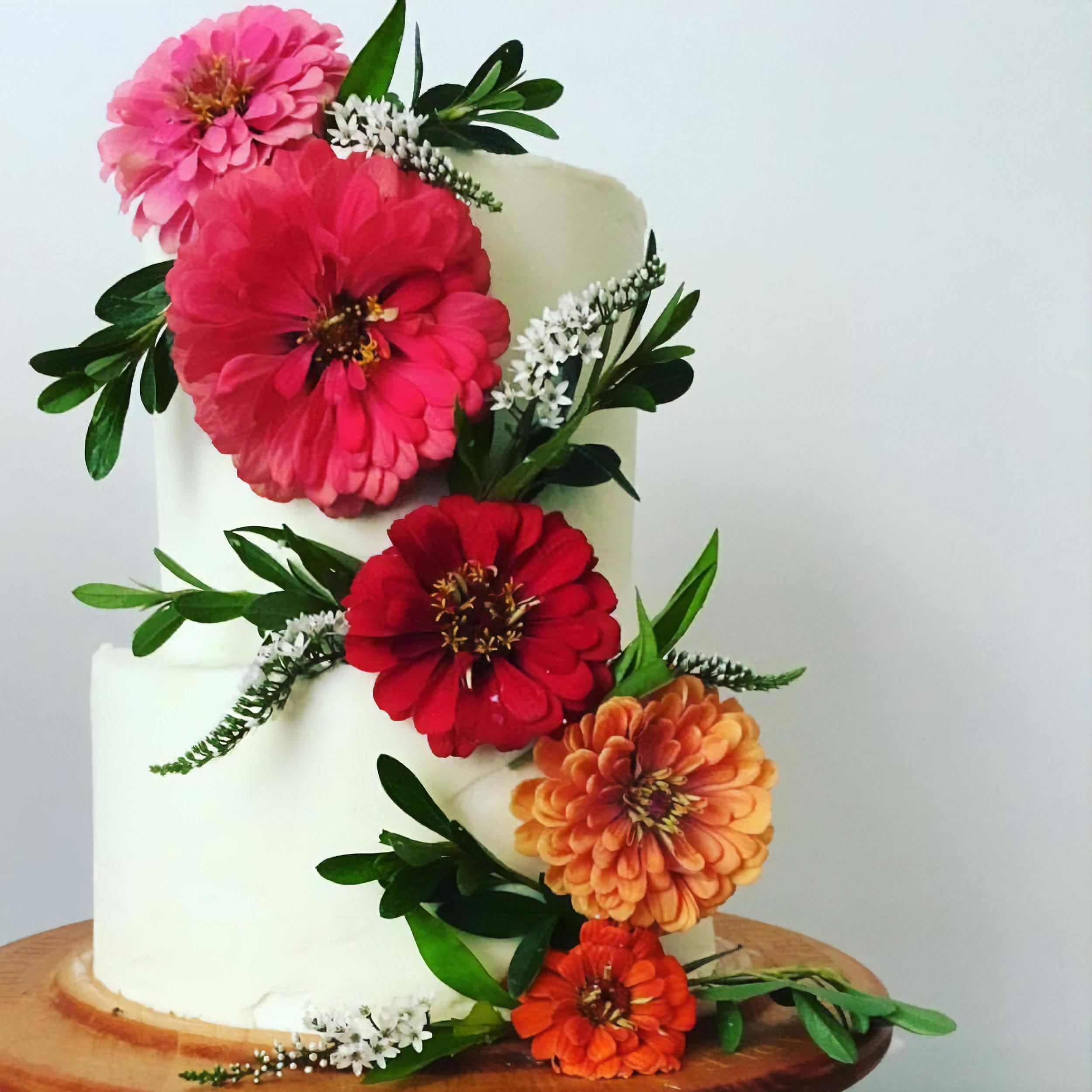 Cakes_Header.jpg