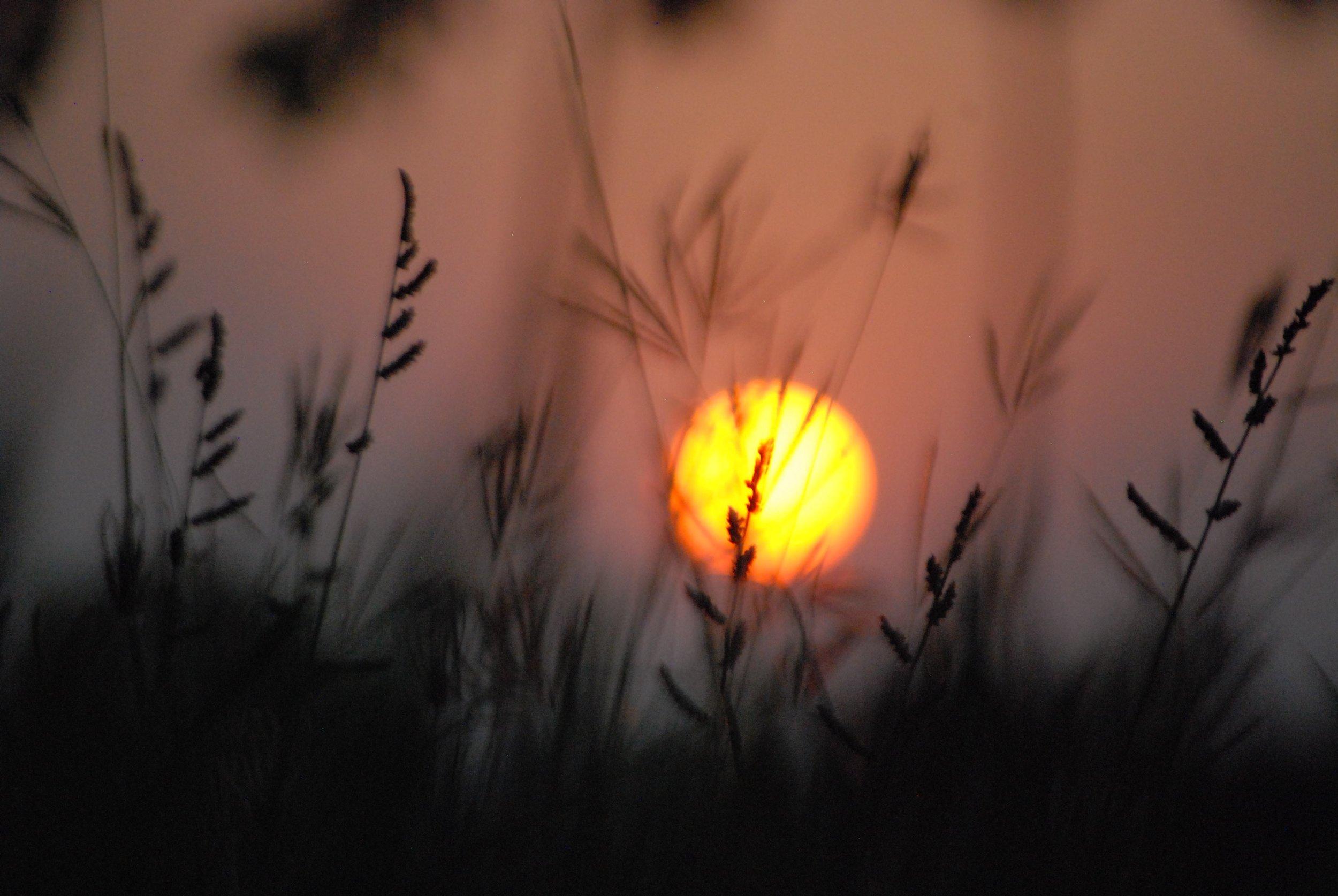India- Sun.jpg