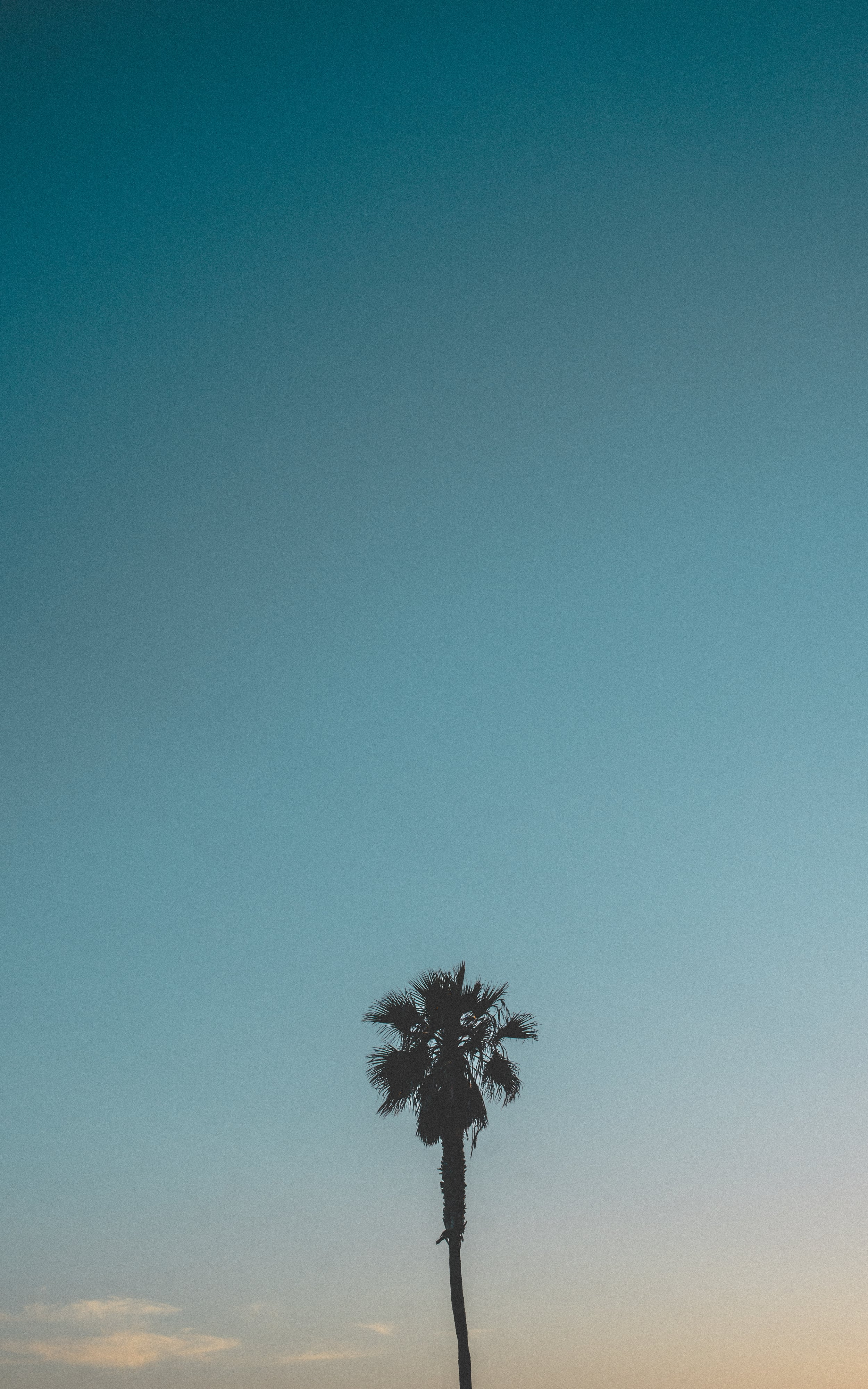 San Diego - Storehouse-2.JPG