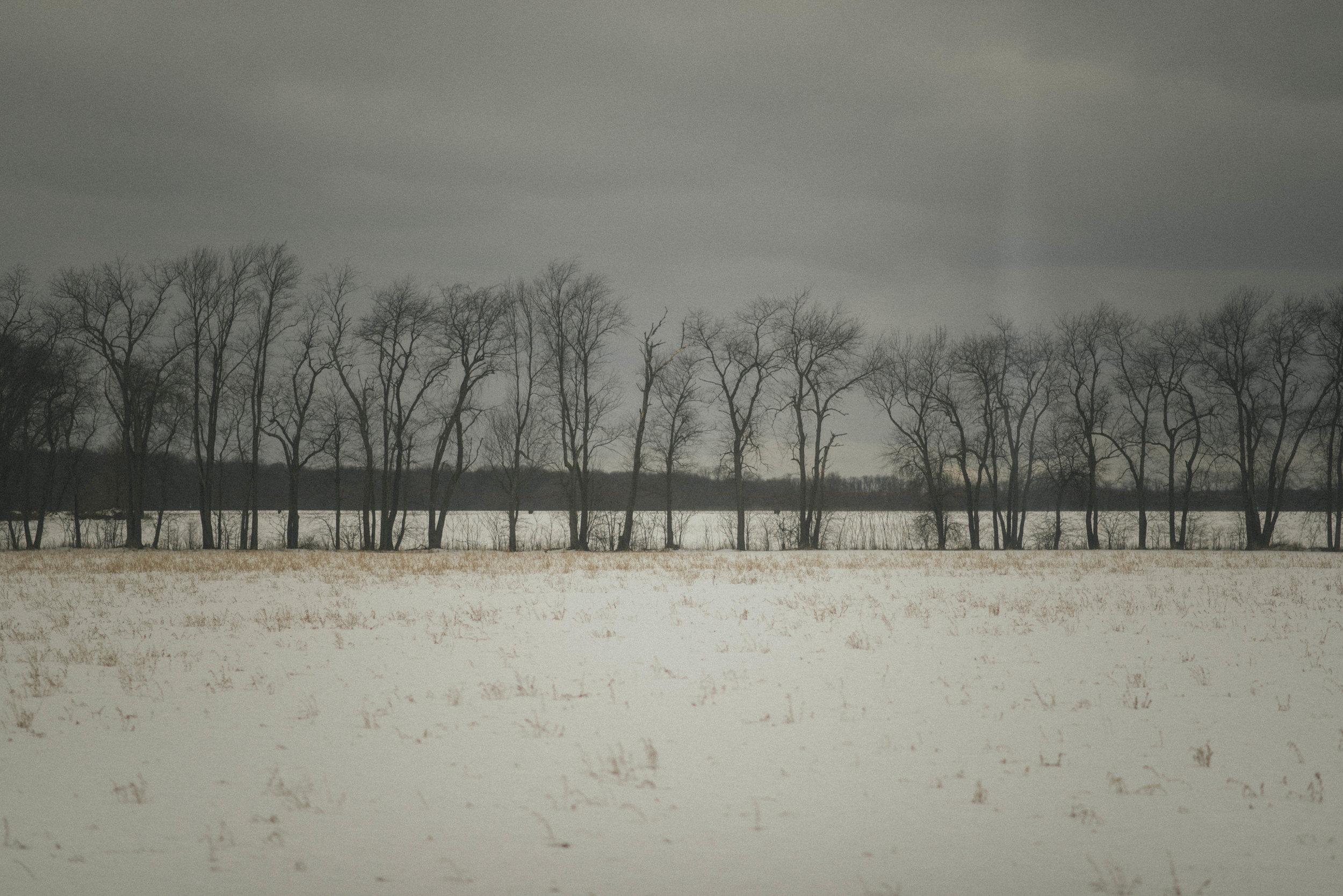 Michigan Scenery - High Res-3.jpg