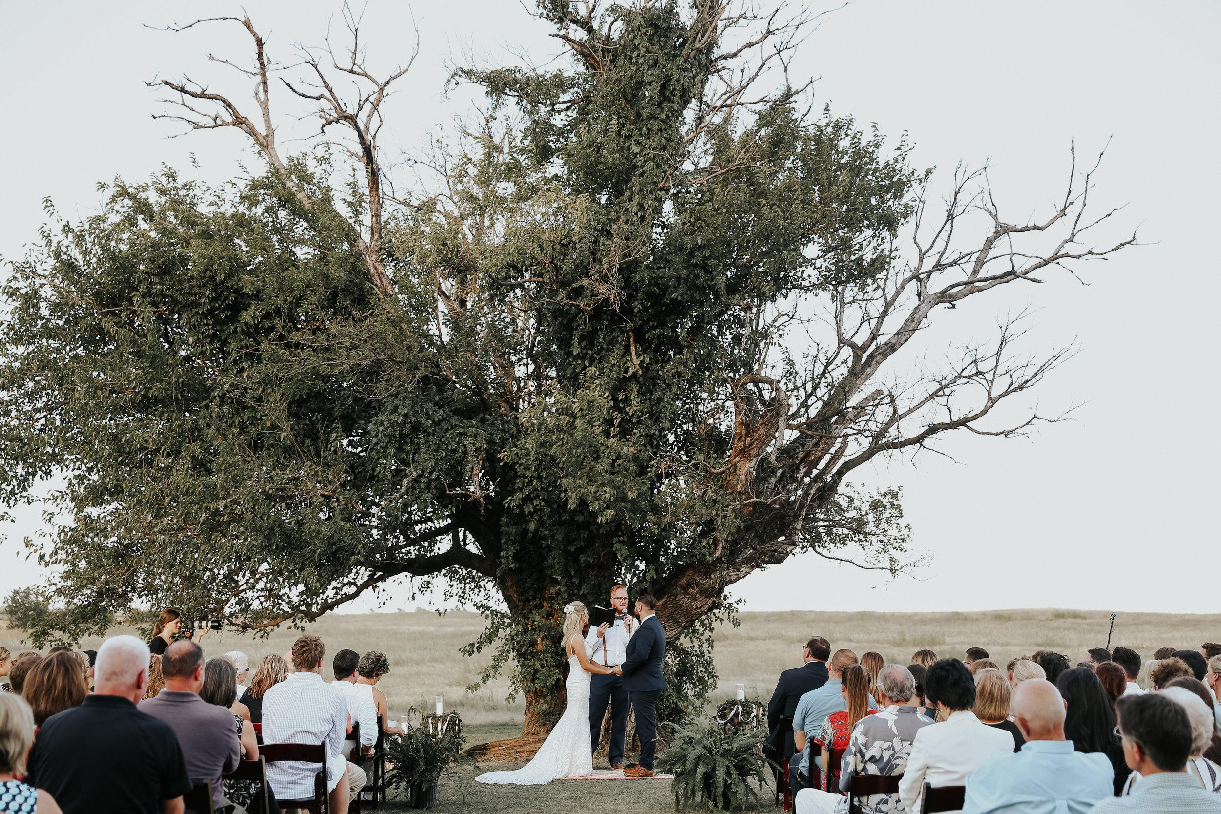 Backyard_Wedding_Oklahoma_MelissaMarshall_21.jpg
