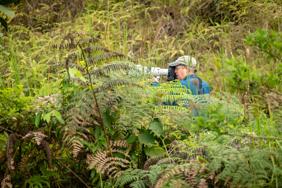 Peter Burke; a good friend, birder & photographer on the field in search for the endemic El Oro Parakeet in southern Ecuador.
