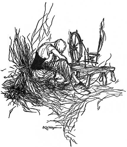 Illustration by A.H. Watson