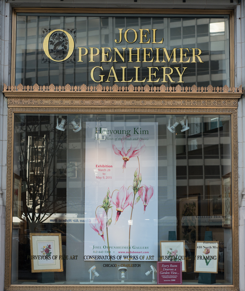 - Heeyoung is honored to be represented as the first and only living artist among masters the gallery represents. J.O Gallery is known with its devotion to the golden age of natural history art, from 17th through 19th centuries. Heeyoung is thrilled to see her works hung side by side with John James Audubon and Pierre-Joseph Redoute. Original works and J.O. Limited Editions are available at the gallery.10 E. Ohio St. Chicago, IL 60611. Tel: 312-642-5300 www.audubonart.com