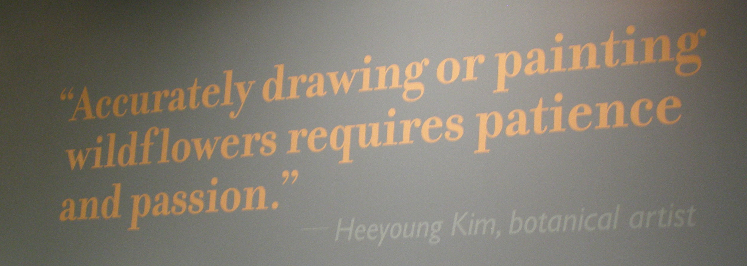 Wall graphic for  Losing Paradise: Endangered Plants Here and Around the world , Smithsonian Natural History Museum,Quote from Heeyoung Kim, 2010